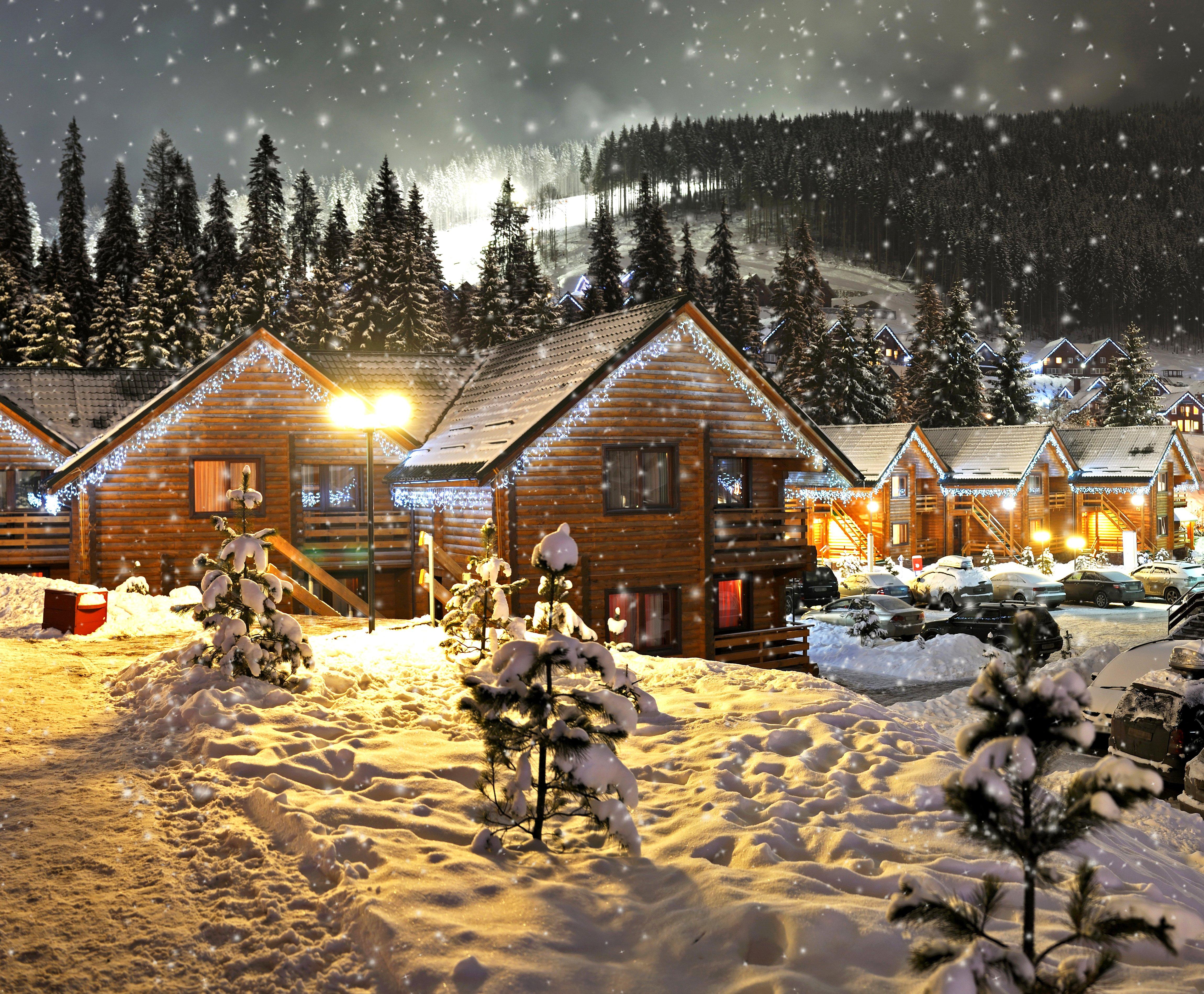 красивые фото новый год зима канадская чашка