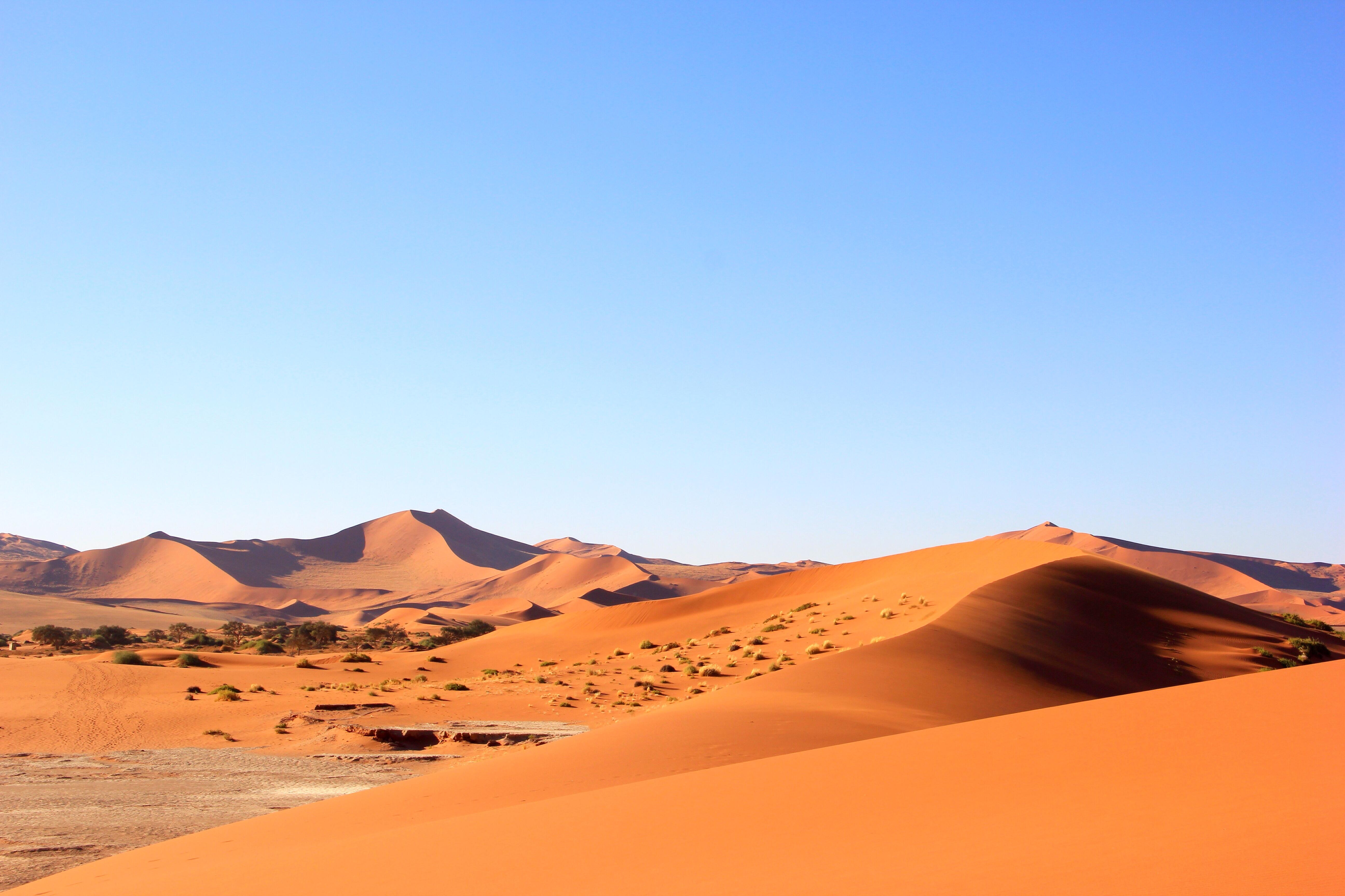 караоке фото в пустыне очень яркие продаже