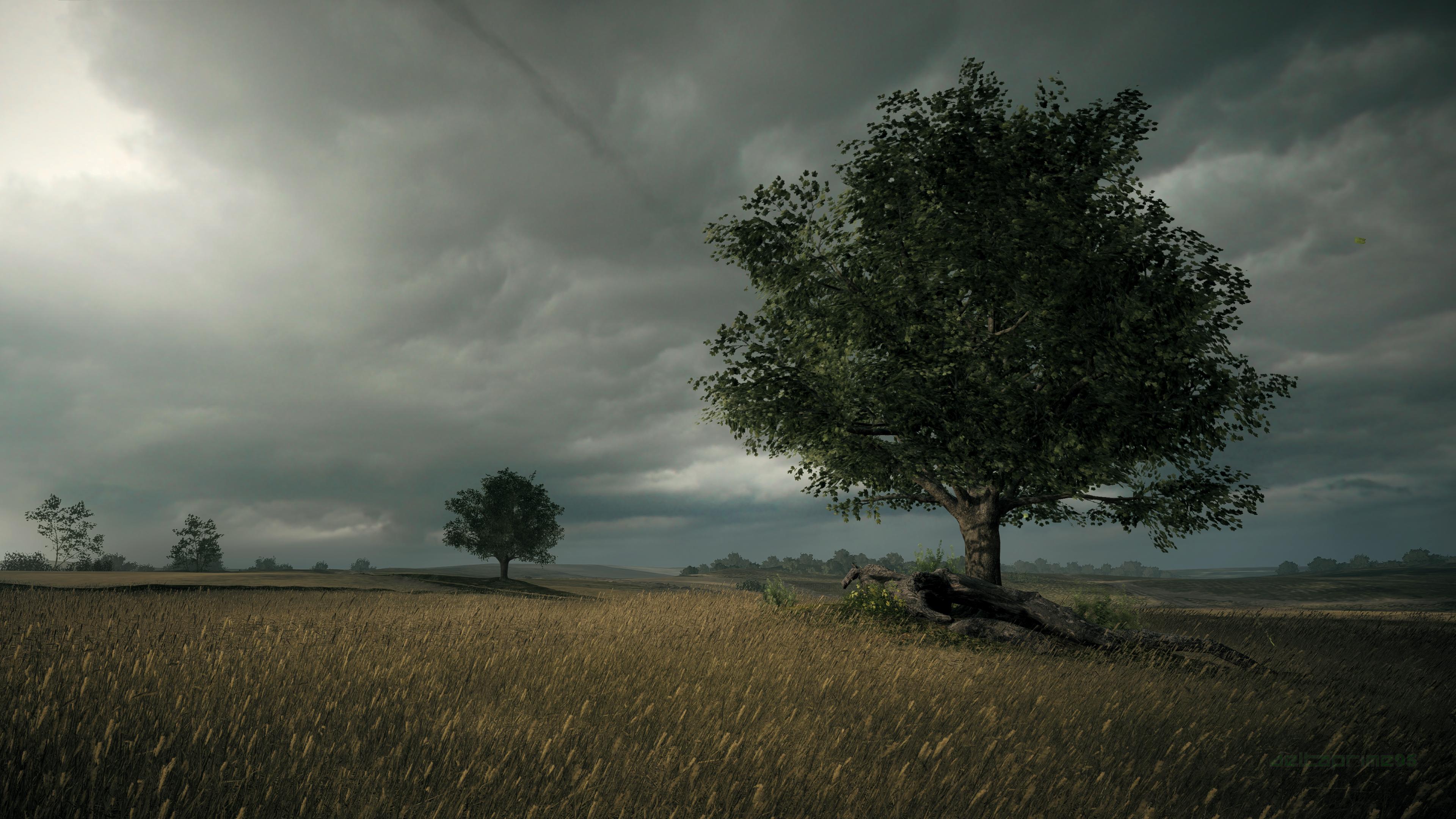 Battlefield 1, River Somme, France