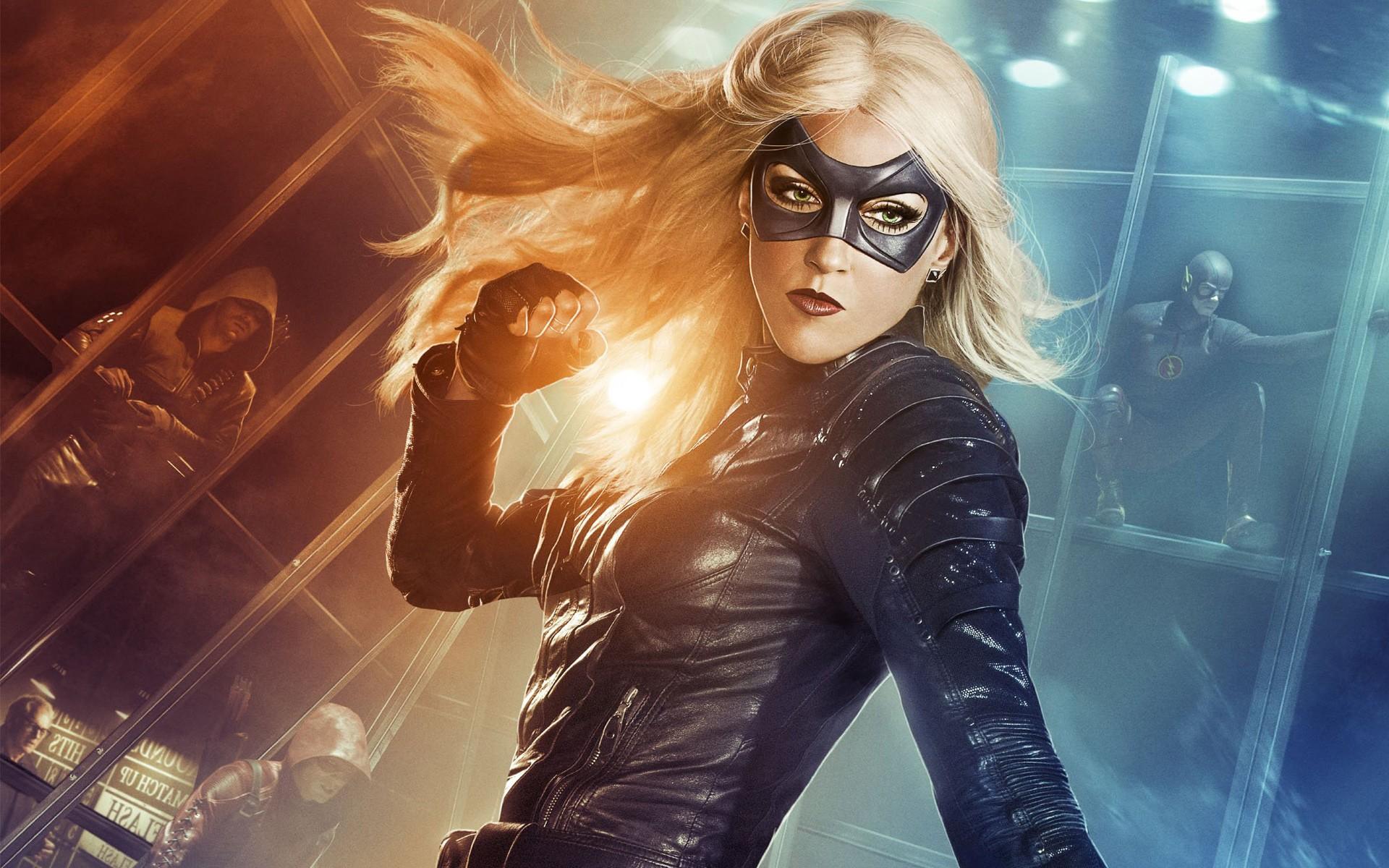 Black Canary Green Arrow DC Comics 3D Superhero