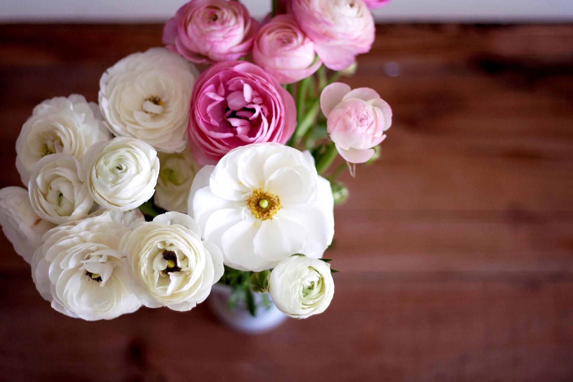 многие фото цветов лютики в высоком качестве разнообразие