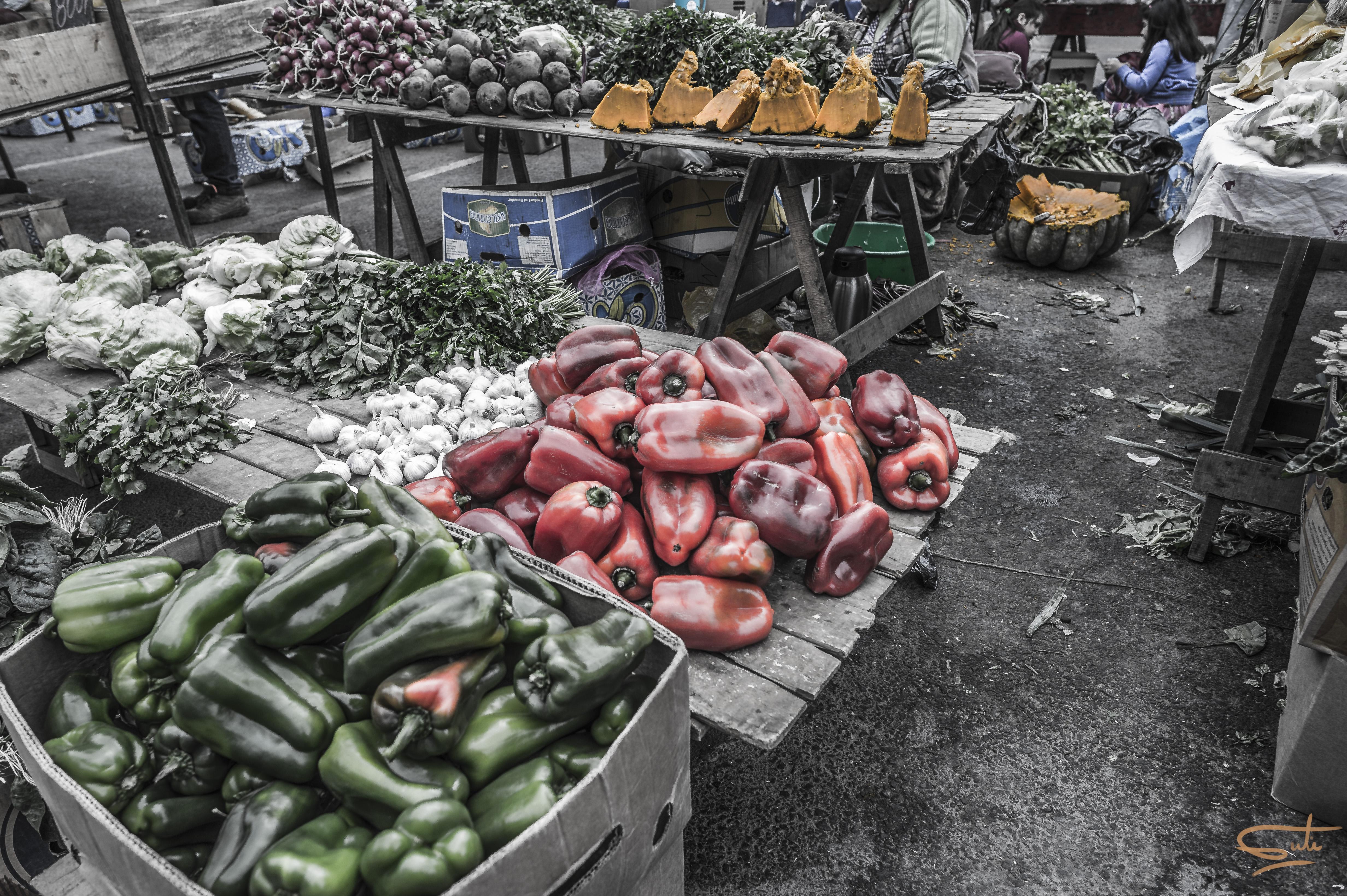 Hintergrundbilder : Chile, Kamera, rot, Verde, Grün, Hähnchen ...