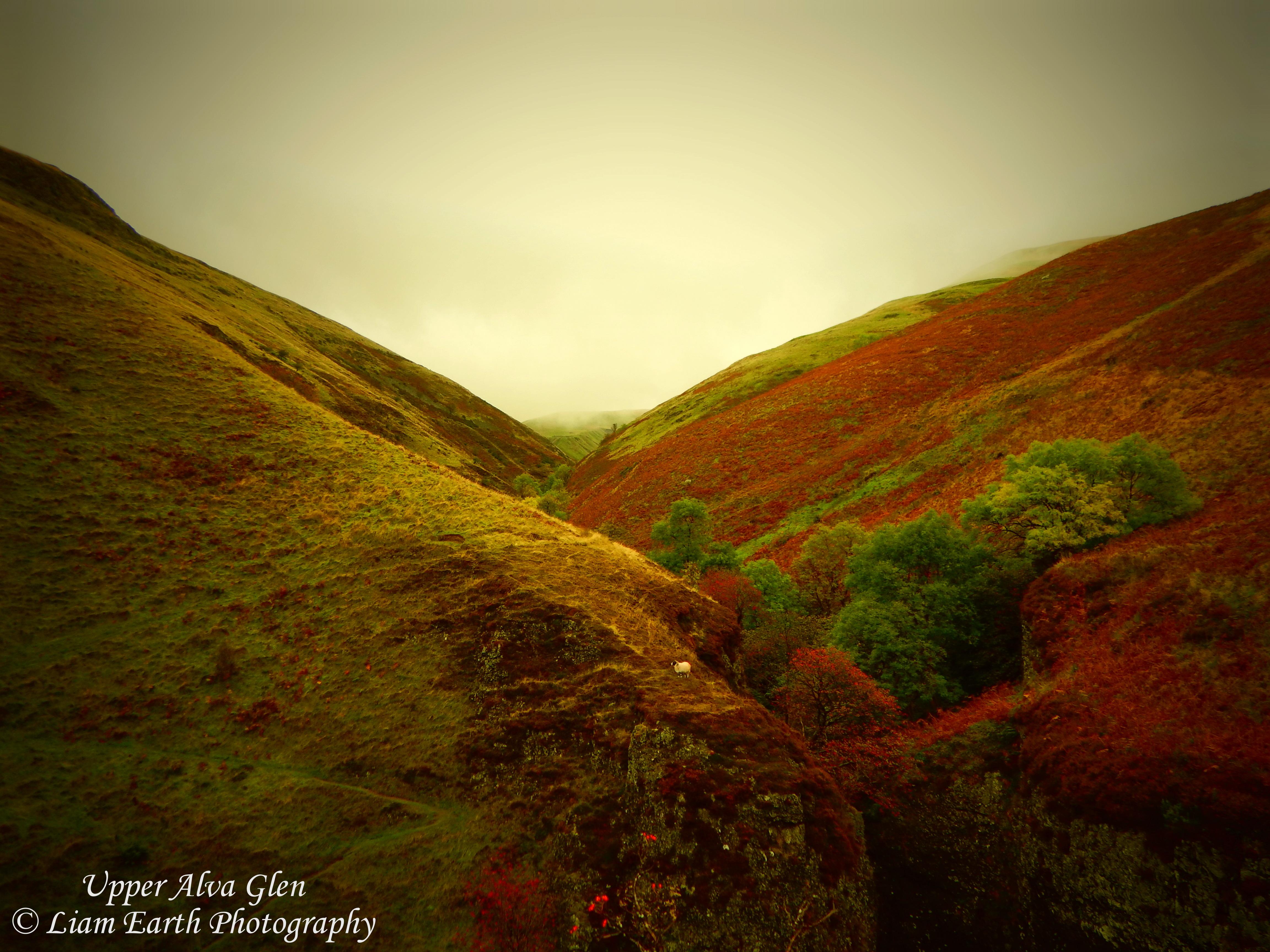 Hintergrundbilder : Erde, Schottland, Alva, Tal, Landschaft ...