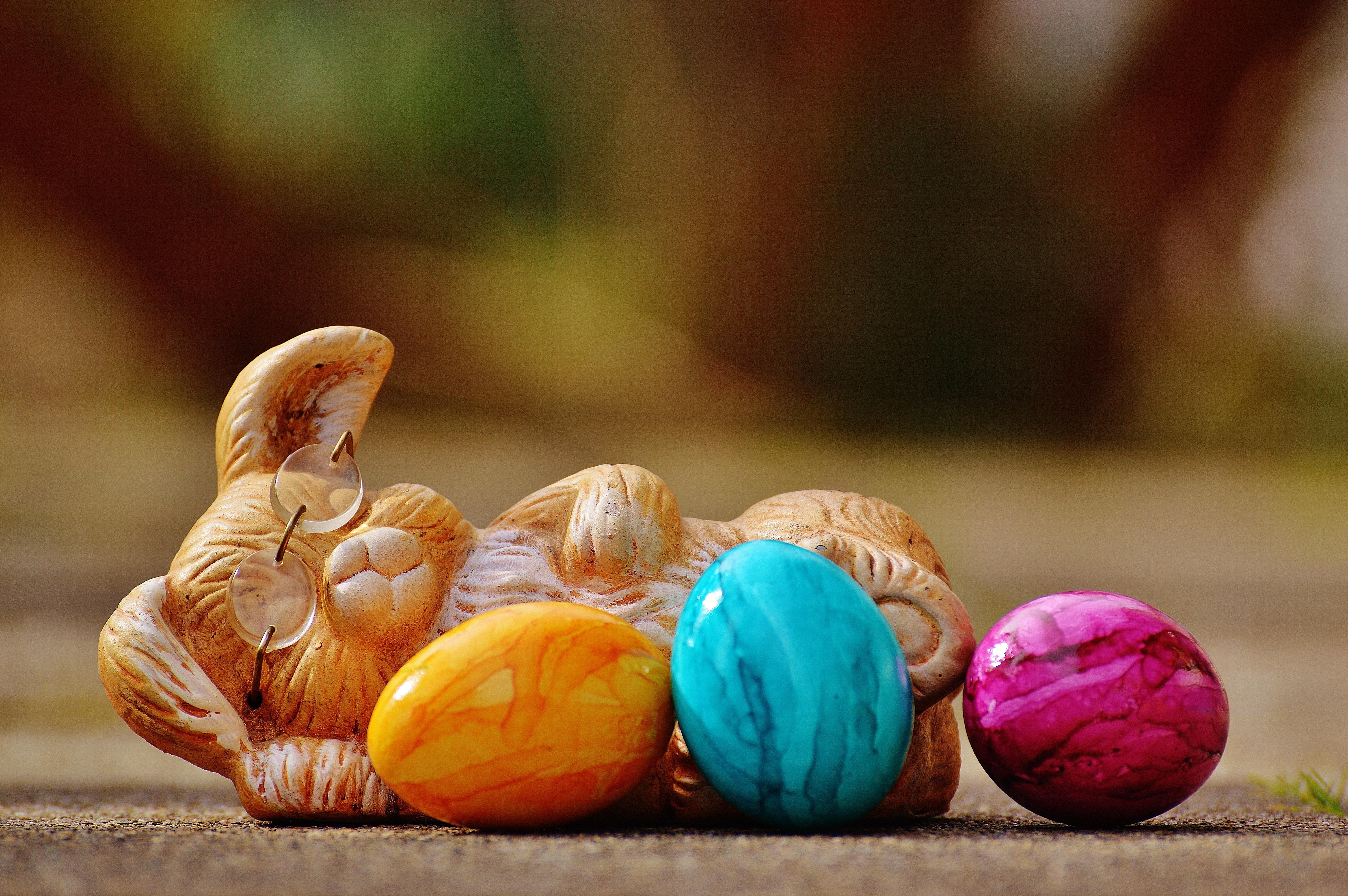 Wallpaper Easter Bunny Eggs 6016x4000