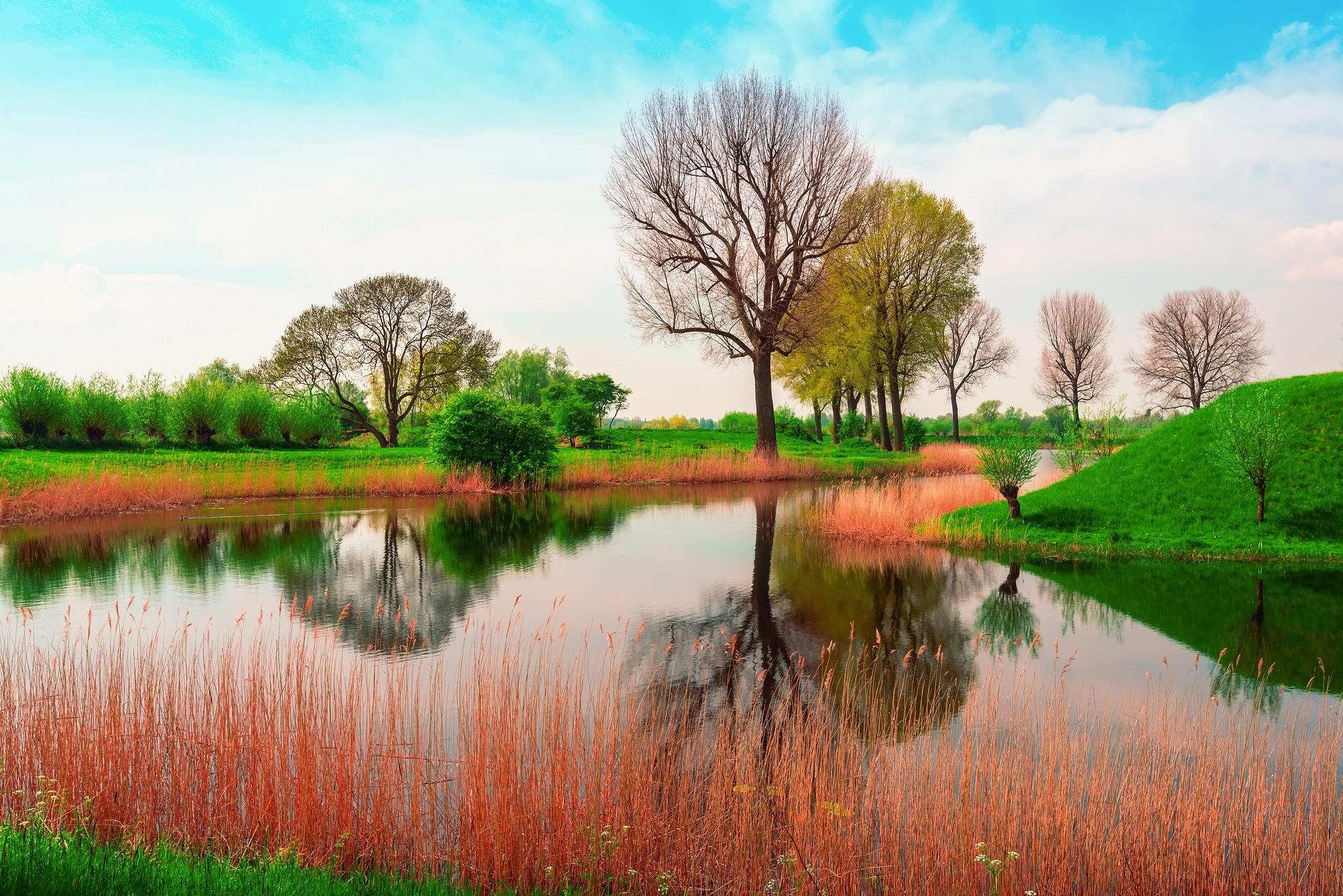 Sfondi primavera natura