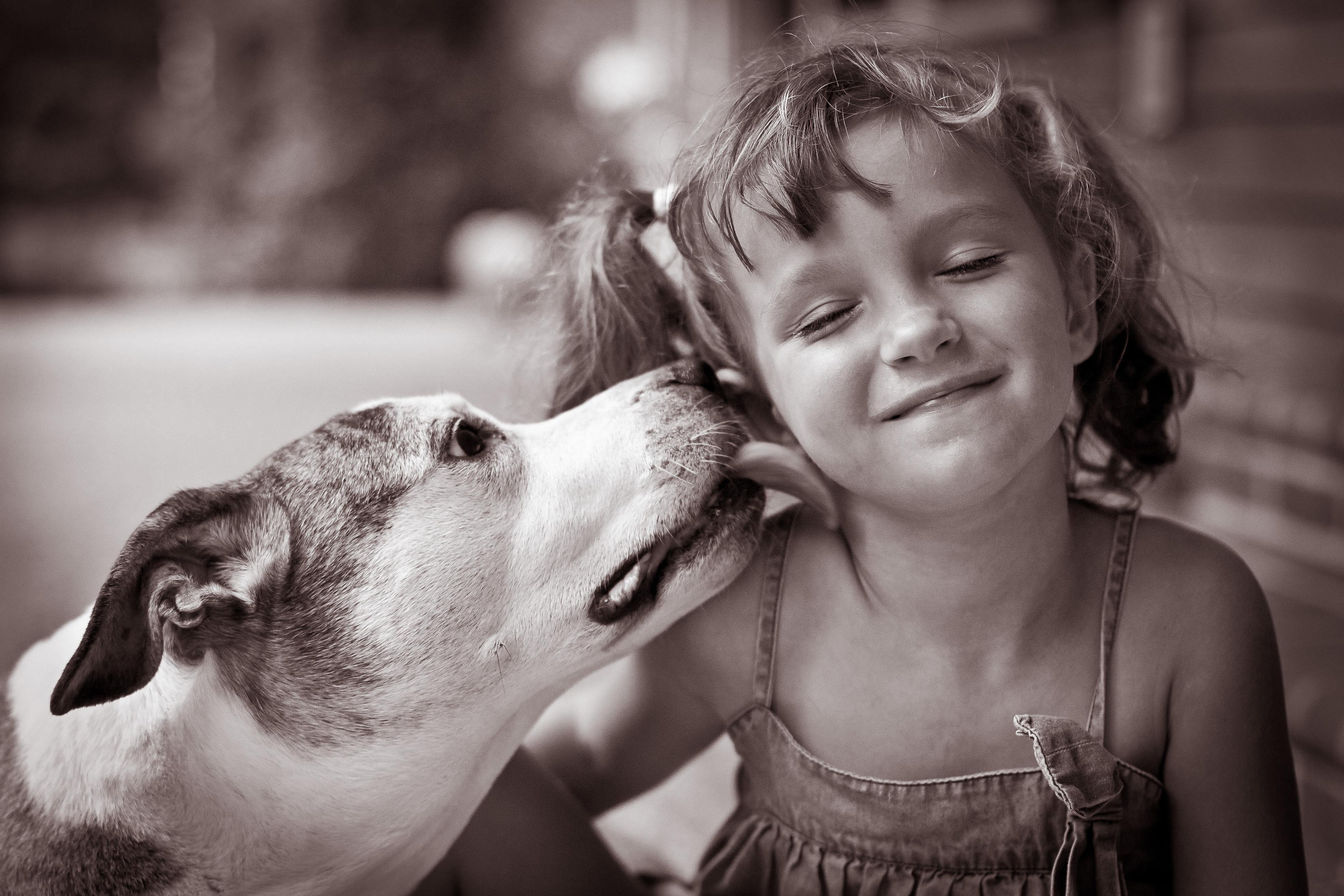 Wallpaper Friends Rescue Love Girl Canon Happy 50mm Virginia Friendship Daughter Pit Richmond Pitbull Va Pigtails Bliss Adopt Bestfriends Adoption Powhatan Specialmoment Flickraward Powhatanva Rememberthatmomentlevel1