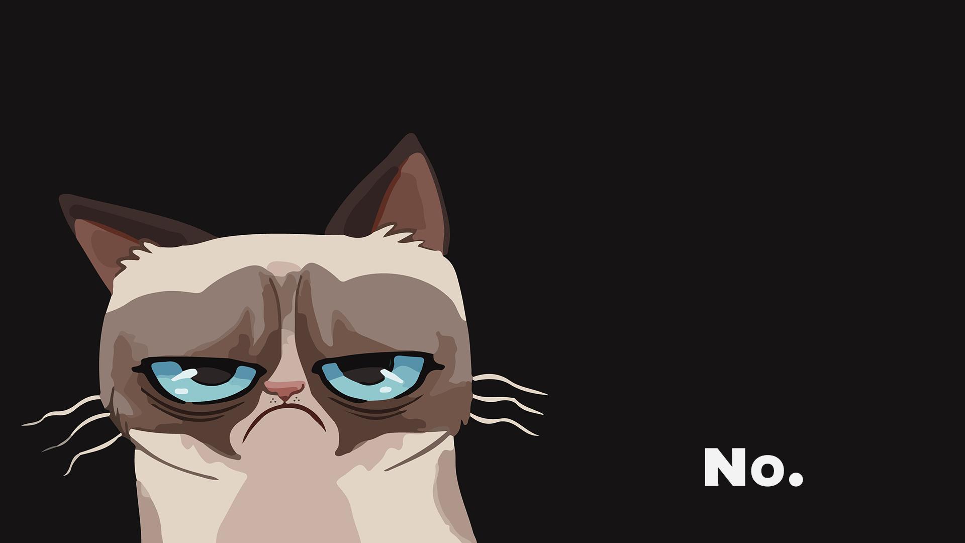 Wallpaper Grumpy Cat 1920x1080 Jniederauer 1357961 Hd