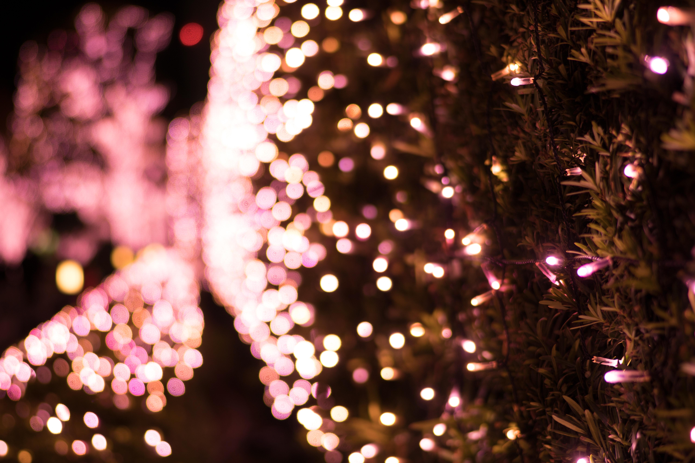Fondos de pantalla jap n noche rama sony rbol de - Luces arbol de navidad ...