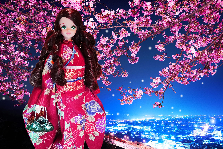 デスクトップ壁紙 日本 夜 紫の 城 桜の花 時間 ピンク 着物