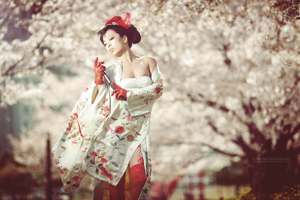 Wallpaper : Japan, portrait, blossoms, cherry blossom ...