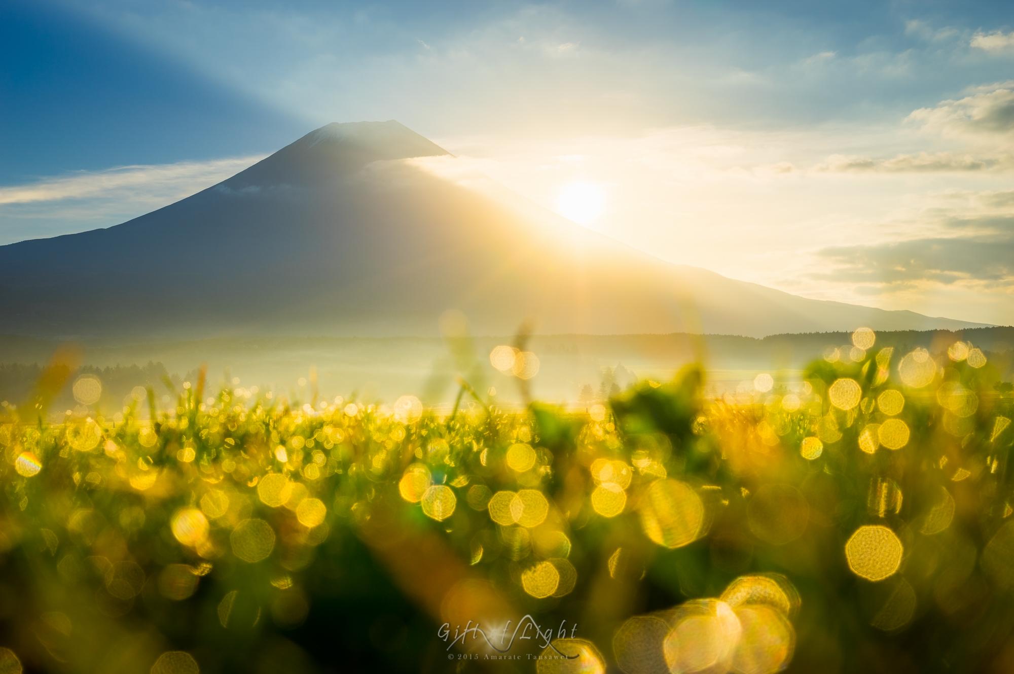 Луч солнца картинки красивые