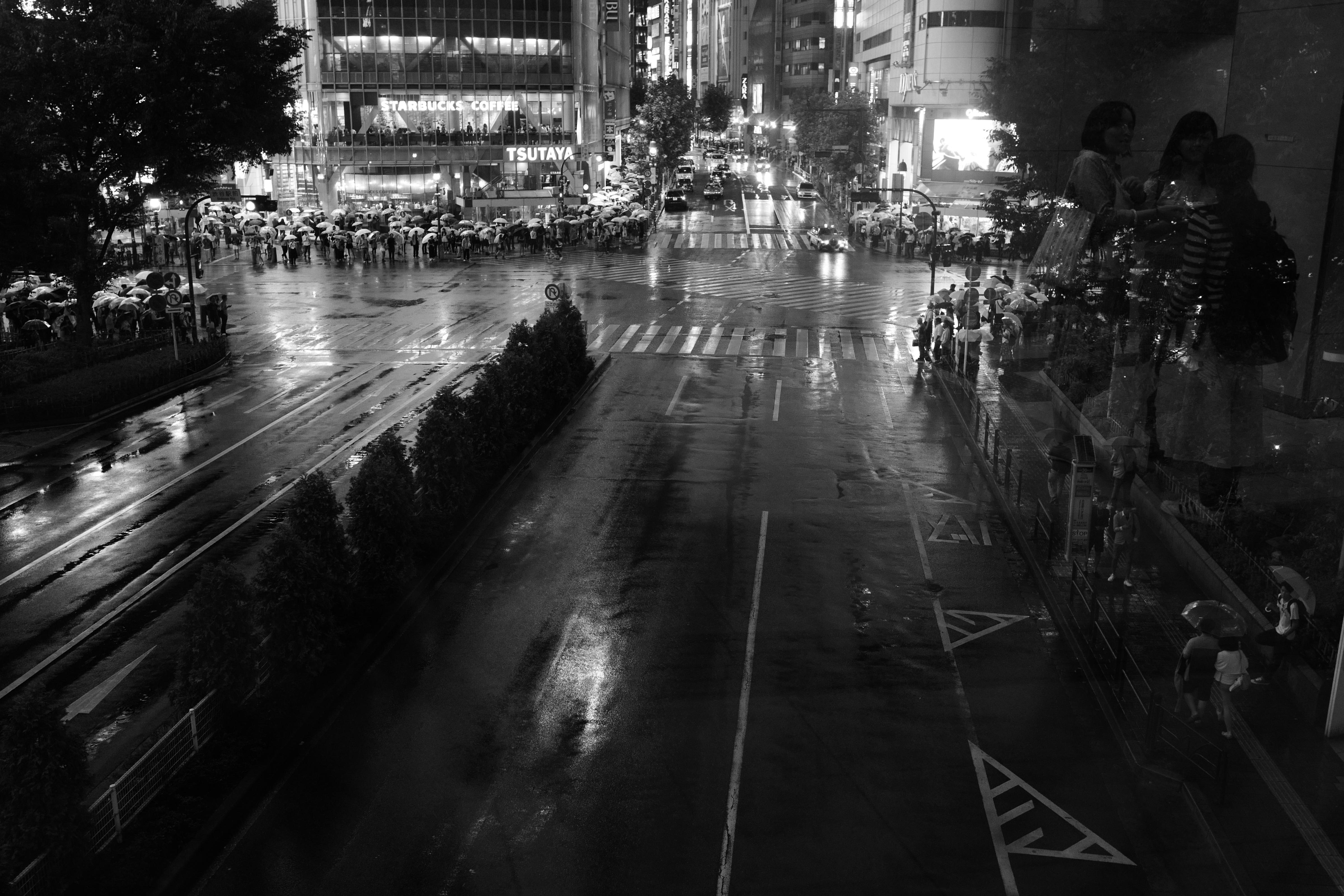 Japan white black monochrome street cityscape night reflection rain  photography Leica Tokyo Jp light weather bw