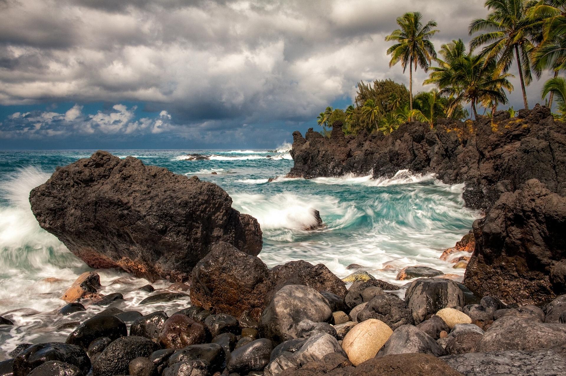 душевых боксов фото тропических берегов красивые модели, конечно