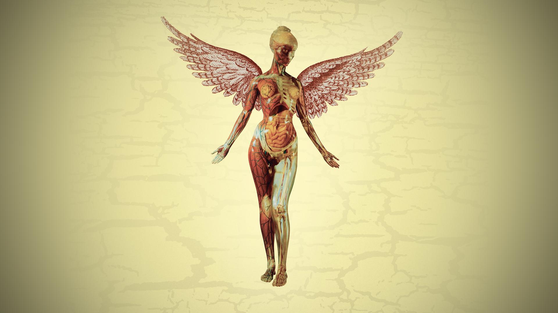 Hintergrundbilder : Nirwana, Album-Cover, Anatomie, Flügel ...