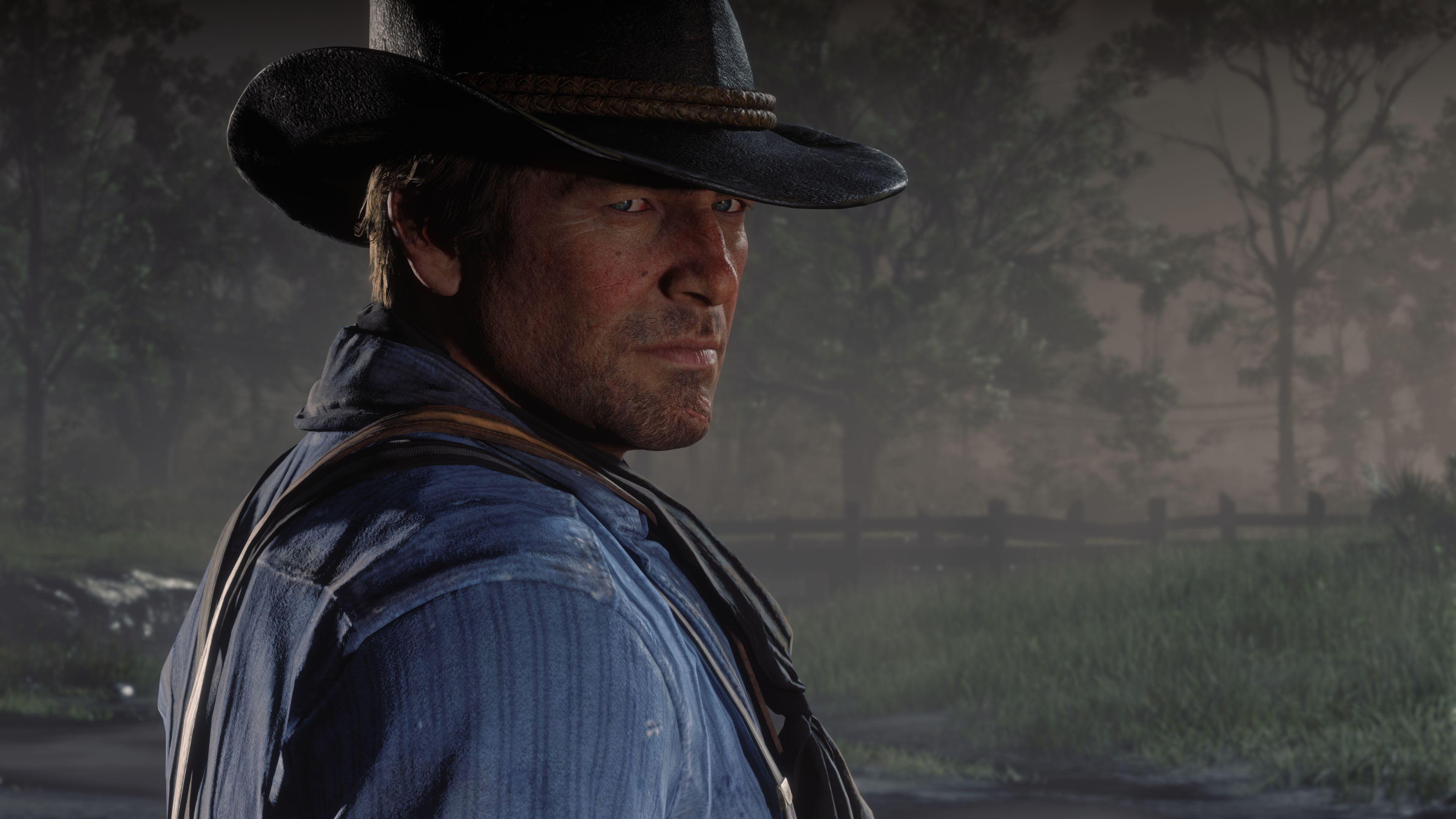Wallpaper  Red Dead Redemption 2, Rockstar Games, video