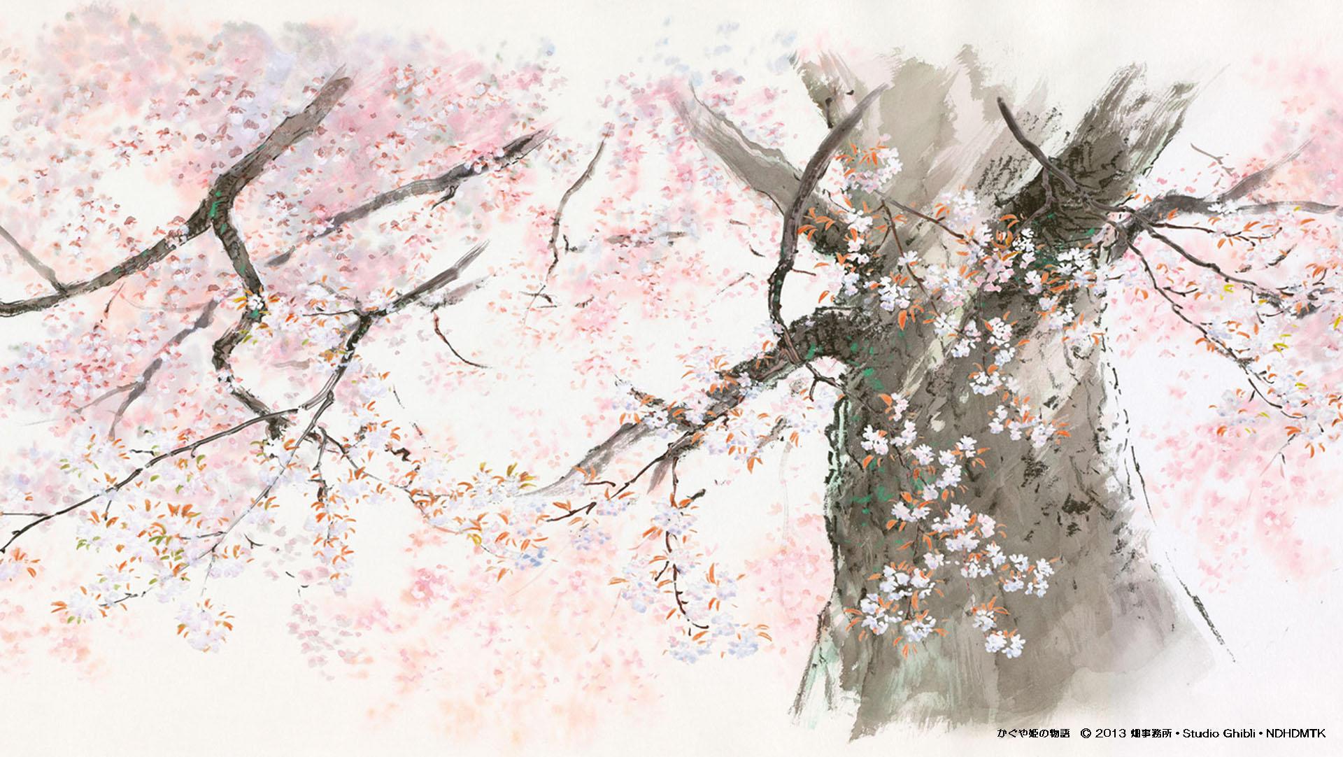 Wallpaper Studio Ghibli Movie Screenshots Anime Cerita
