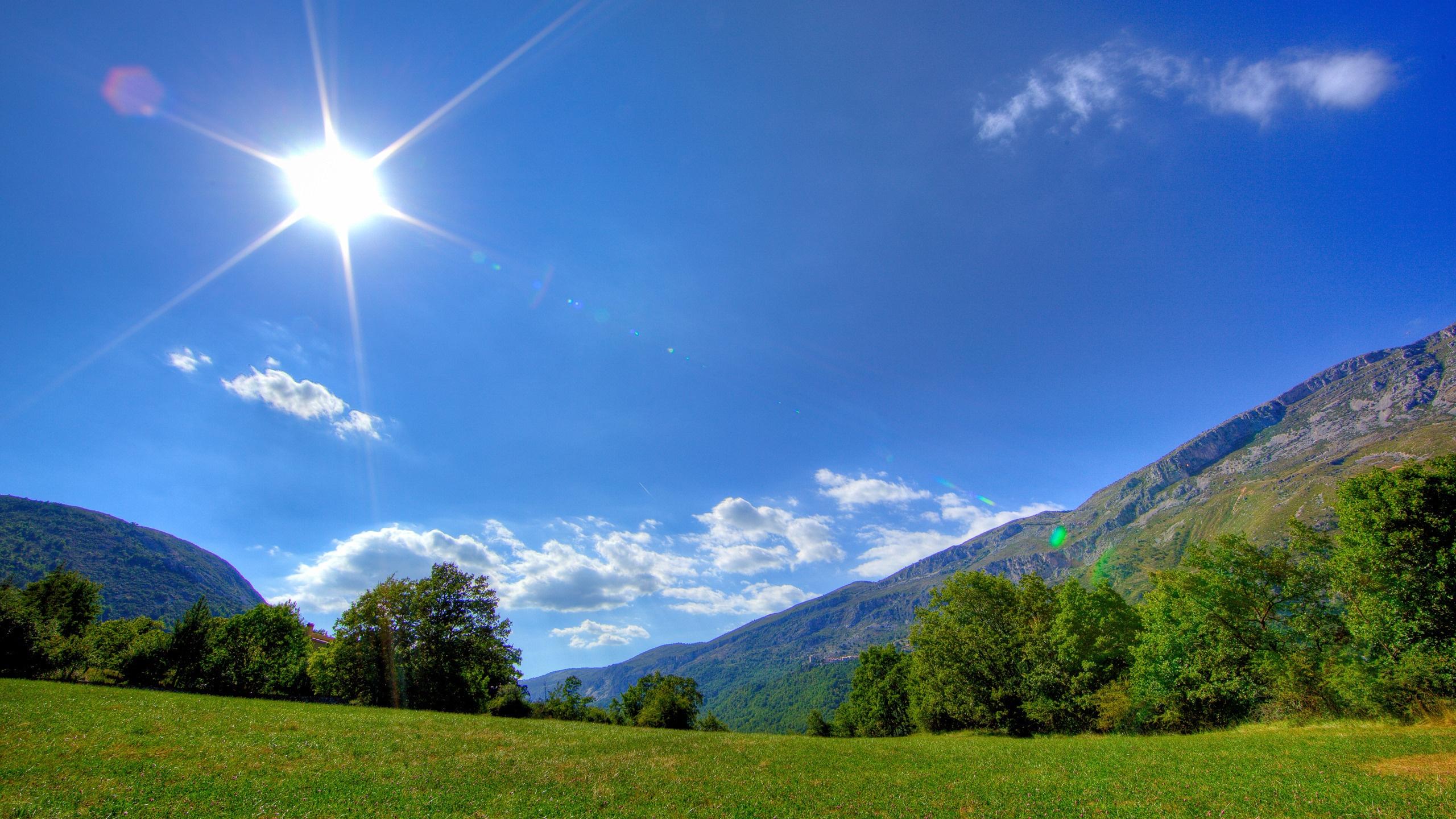 Солнечный день красивые картинки