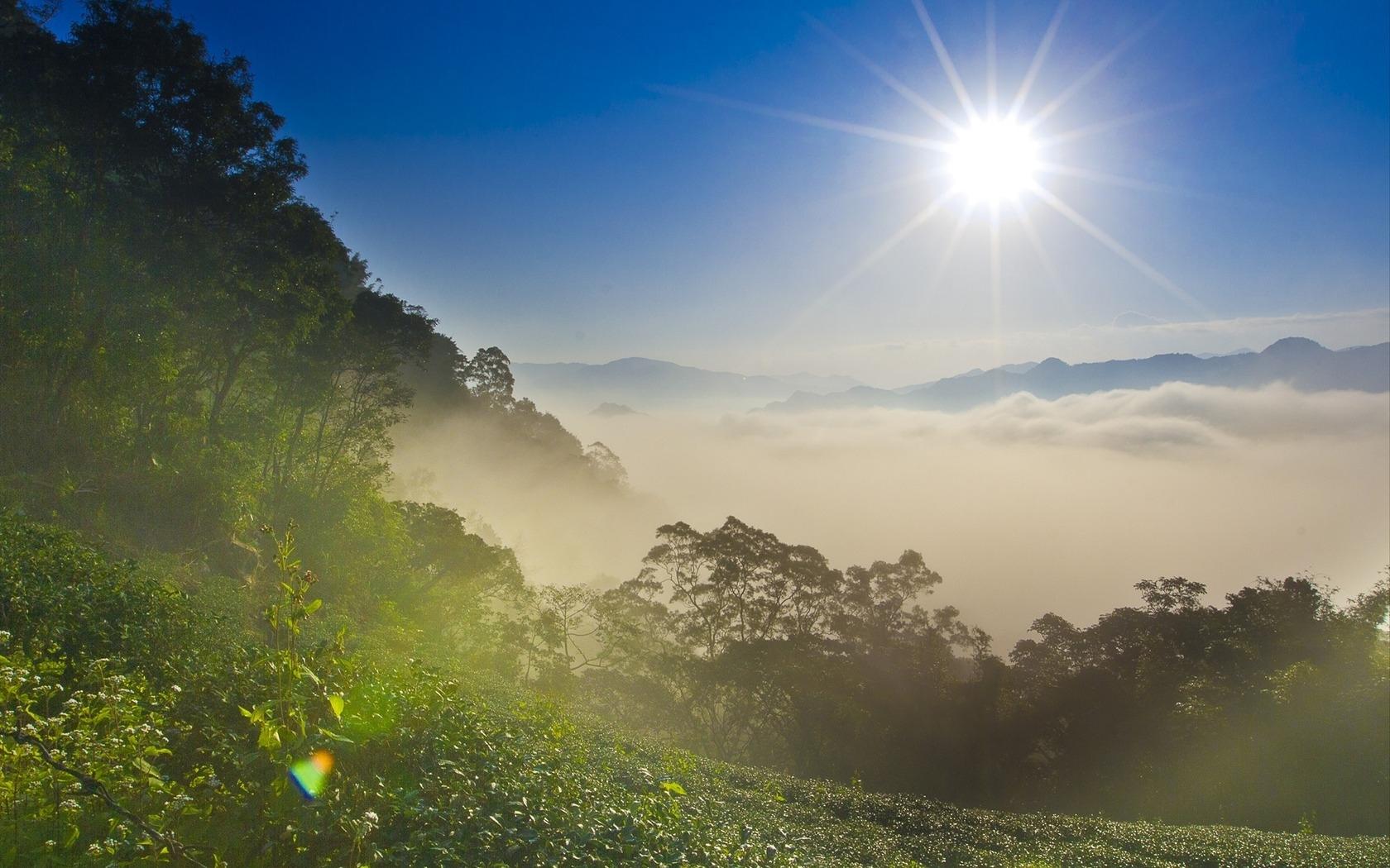 Настройки фото пейзажа при солнечном свете