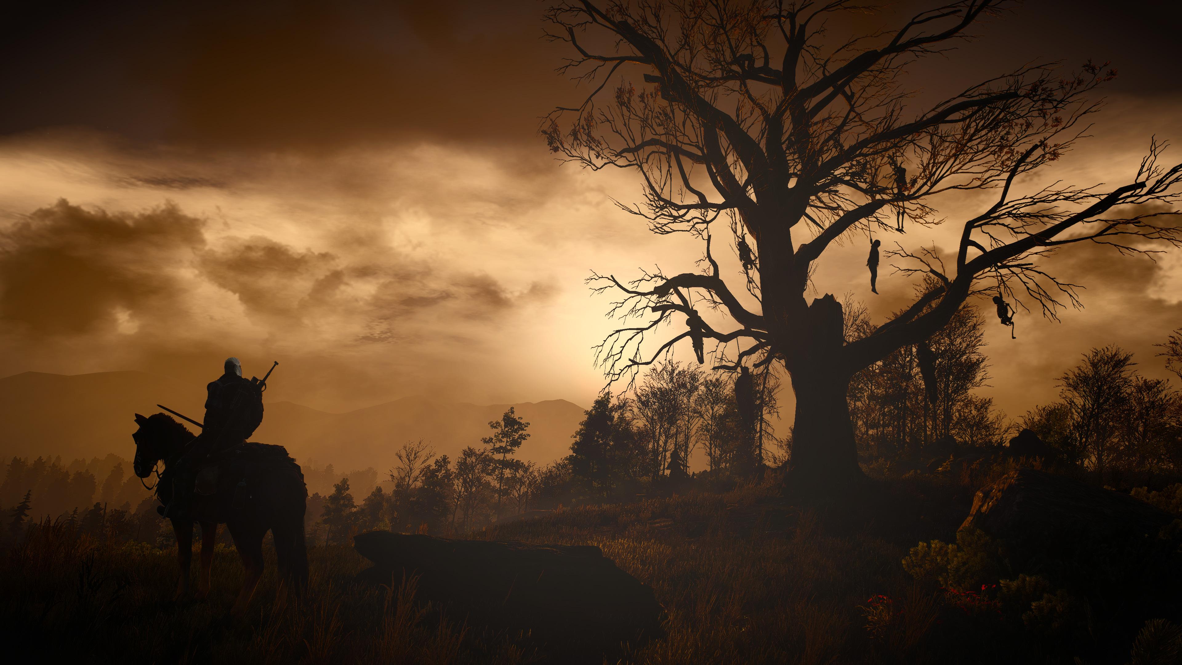 The Witcher Video Game Art video games artwork tree bark horse Geralt of Rivia