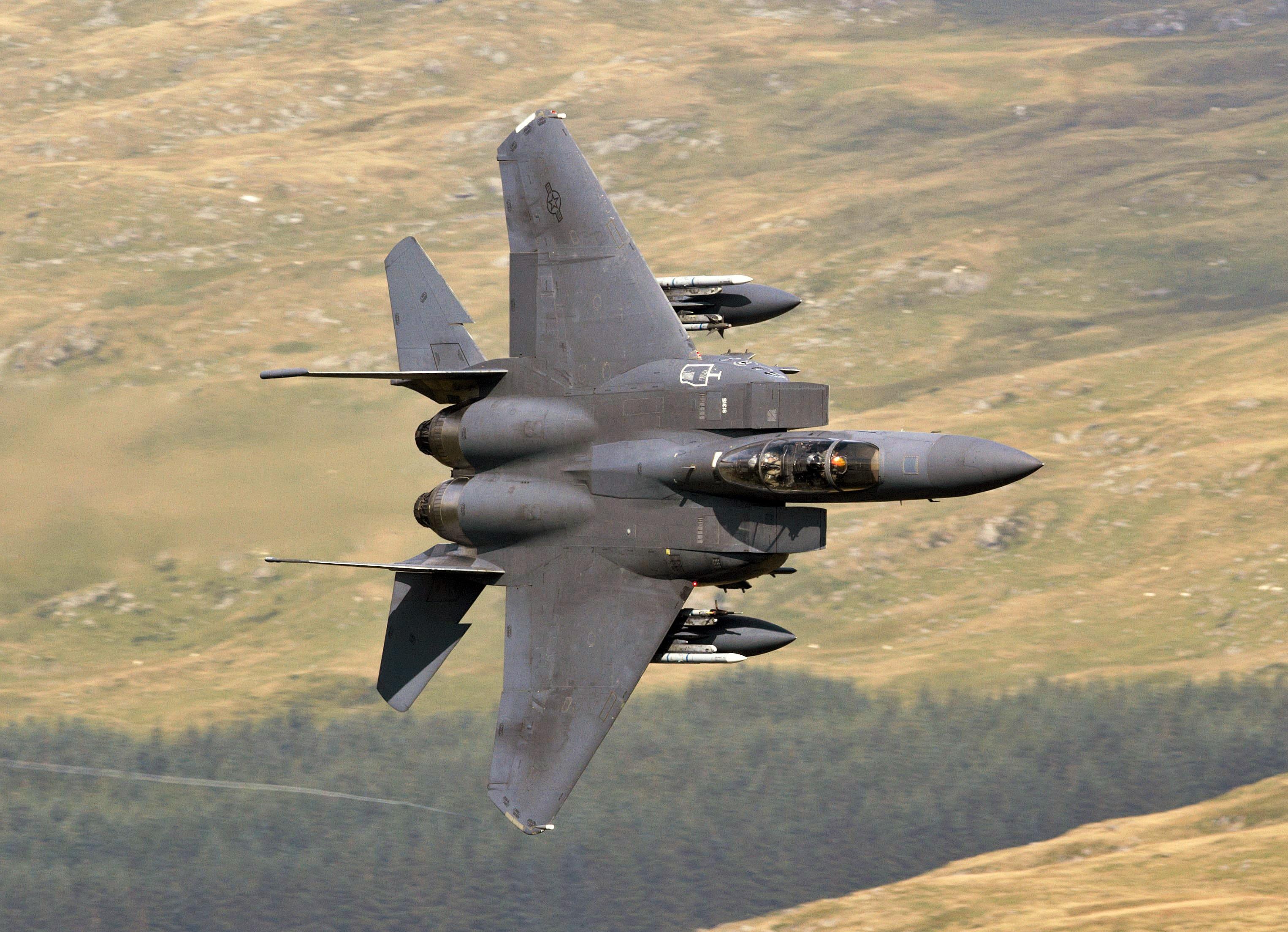 wallpaper : airplane, military aircraft, usa, eagle, grumman f 14