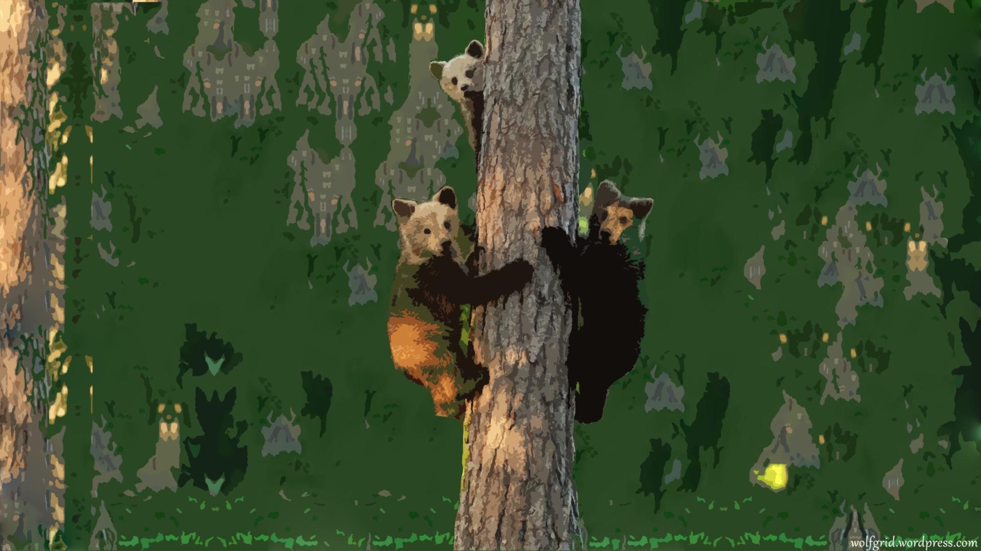 Wallpaper Hewan Beruang Gambar Kartun Apanda