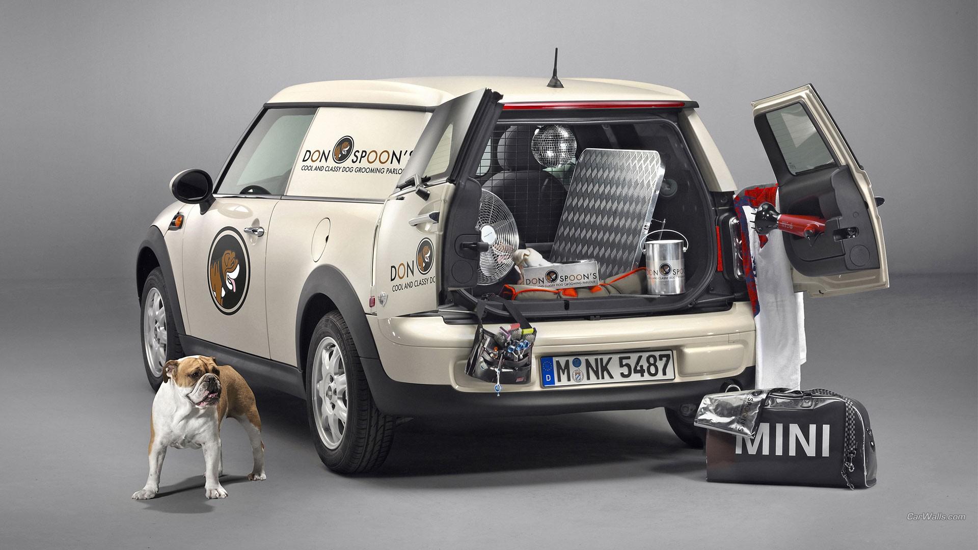 Wallpaper Animals Dog Mini Cooper Mini Clubvan Mini Cooper