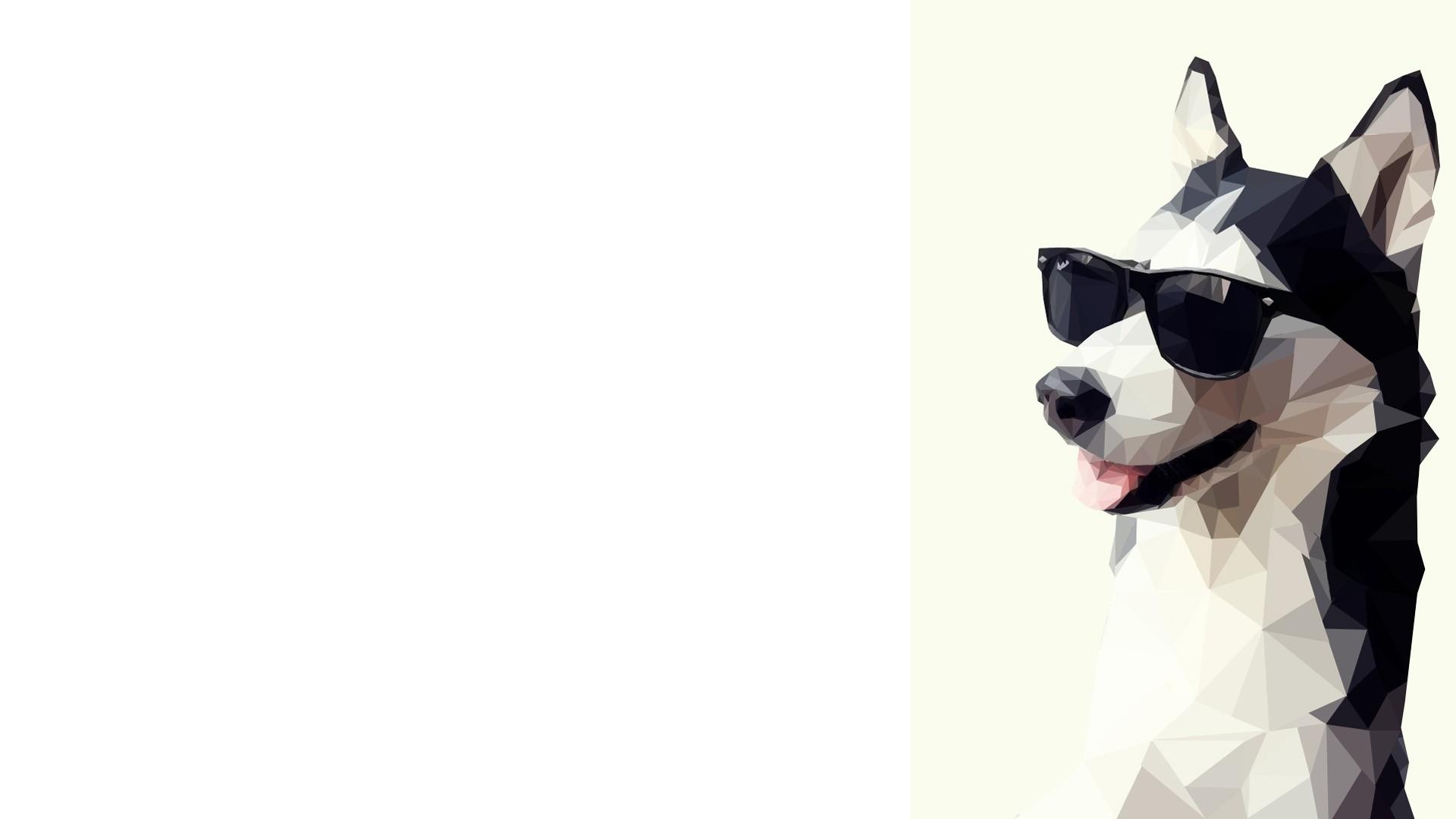 Wallpaper animals simple background sunglasses anime artwork