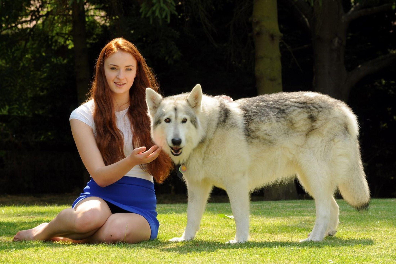 Wallpaper Animals Women Outdoors Redhead Barefoot Actress
