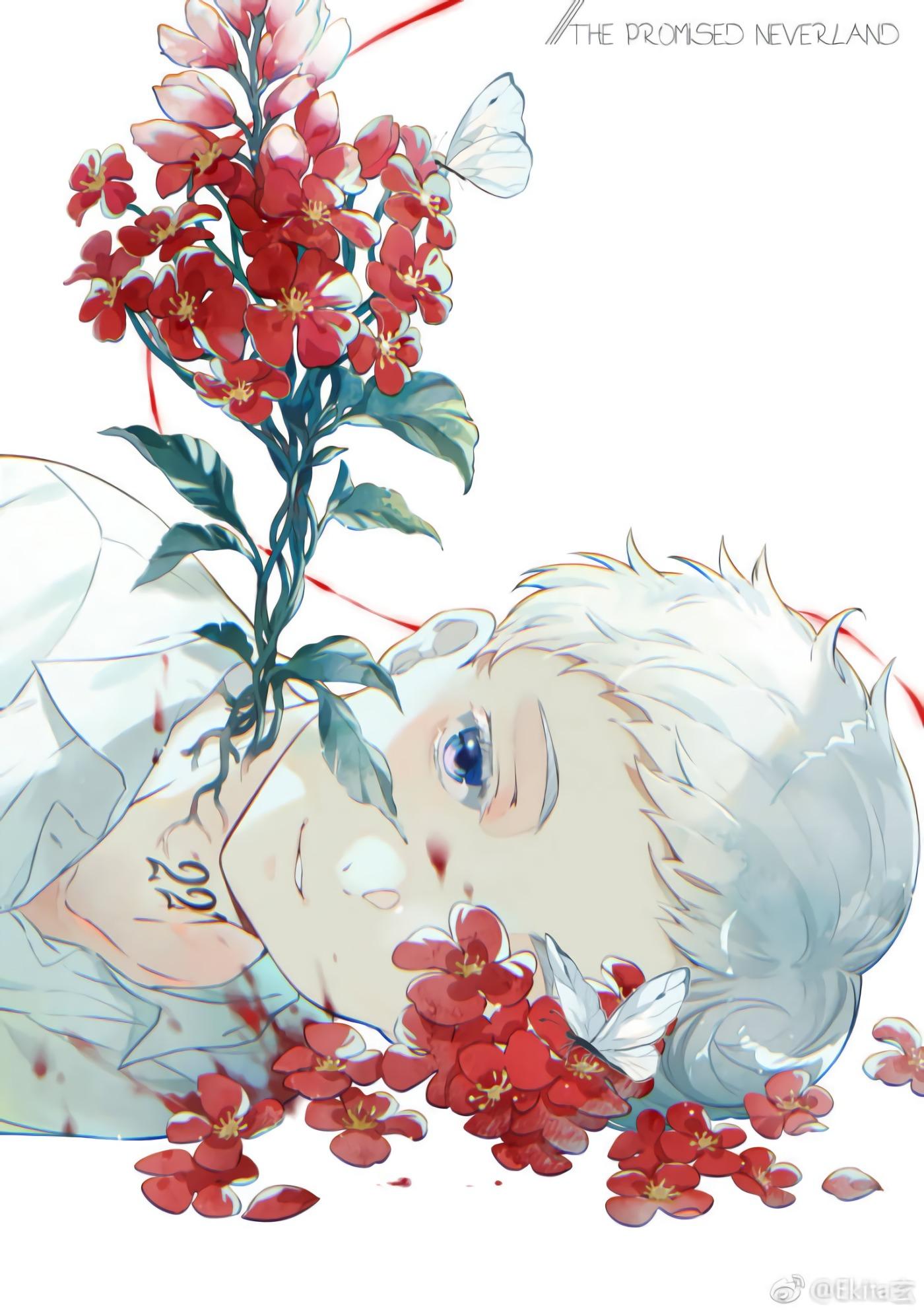 Wallpaper Yakusoku No Neverland Anime Boys Norman The Promised