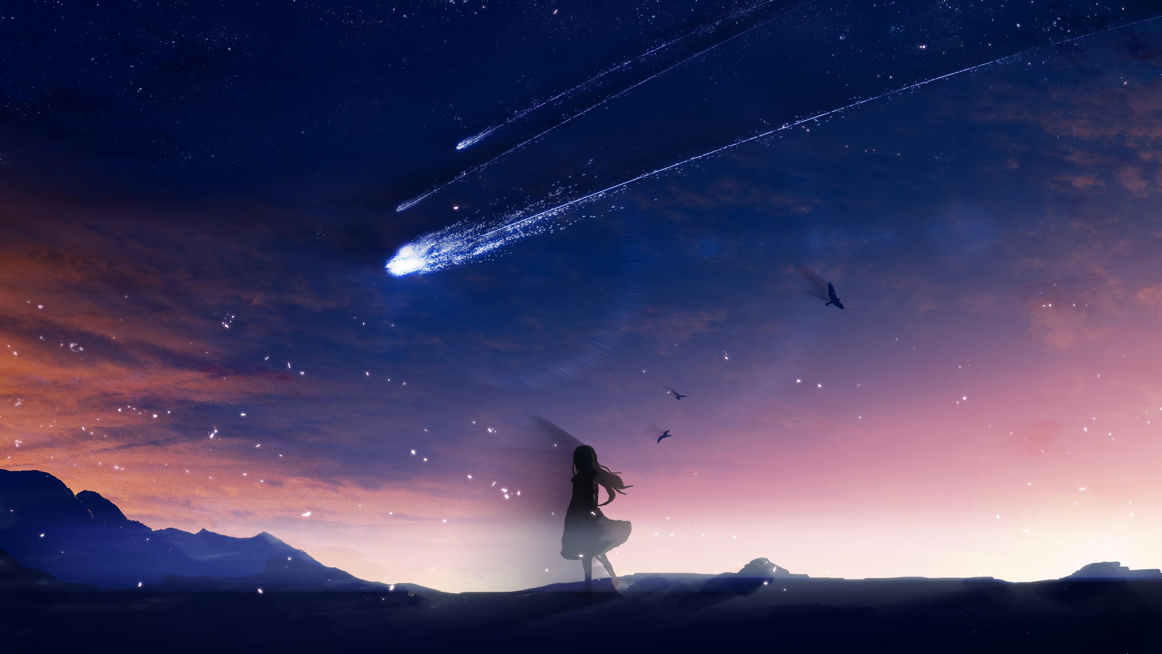 Wallpaper : anime girls, shooting stars