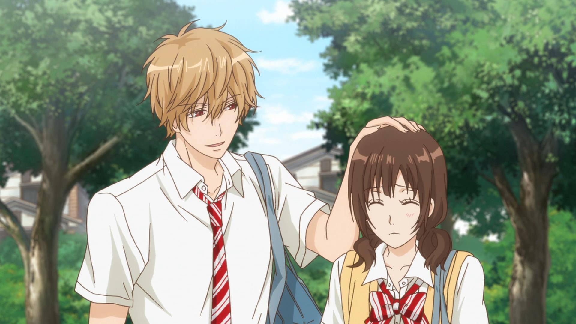 wallpaper  anime screenshot mangaka wolf girl and