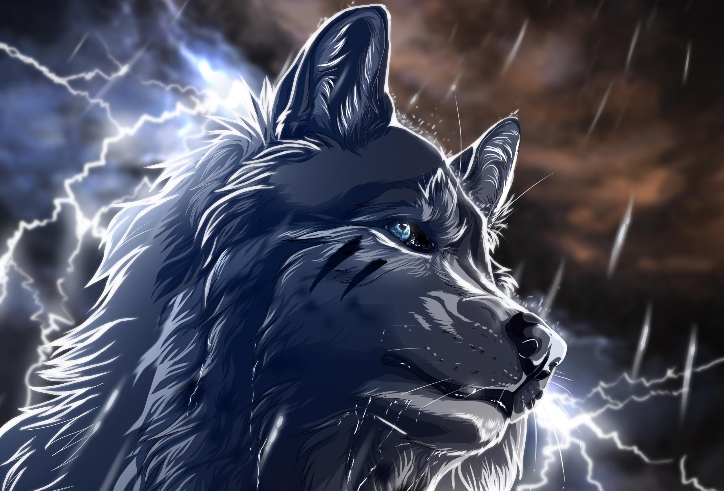 Anime wolf rain