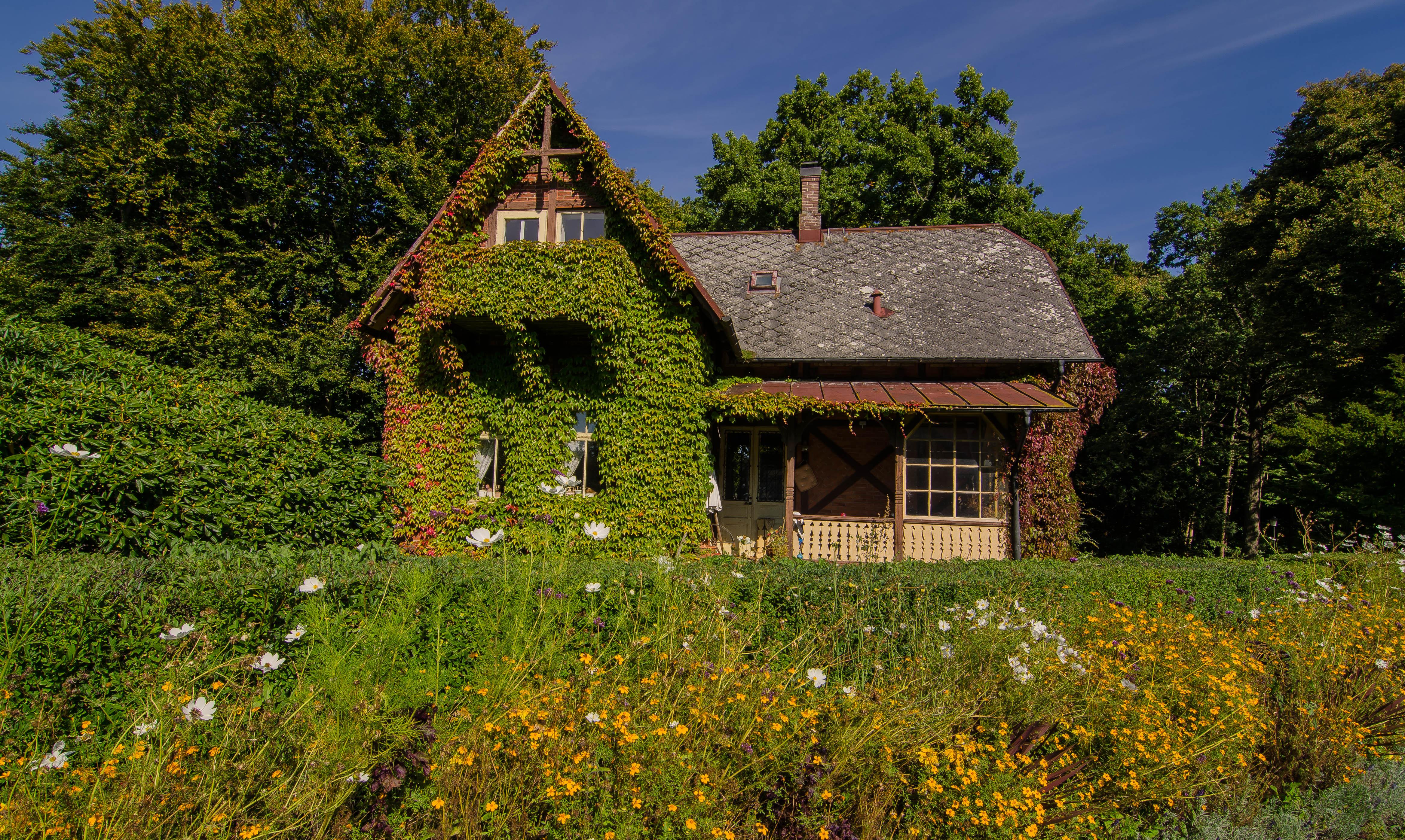 деревенские дома в прибалтике фото подборка фотообоев