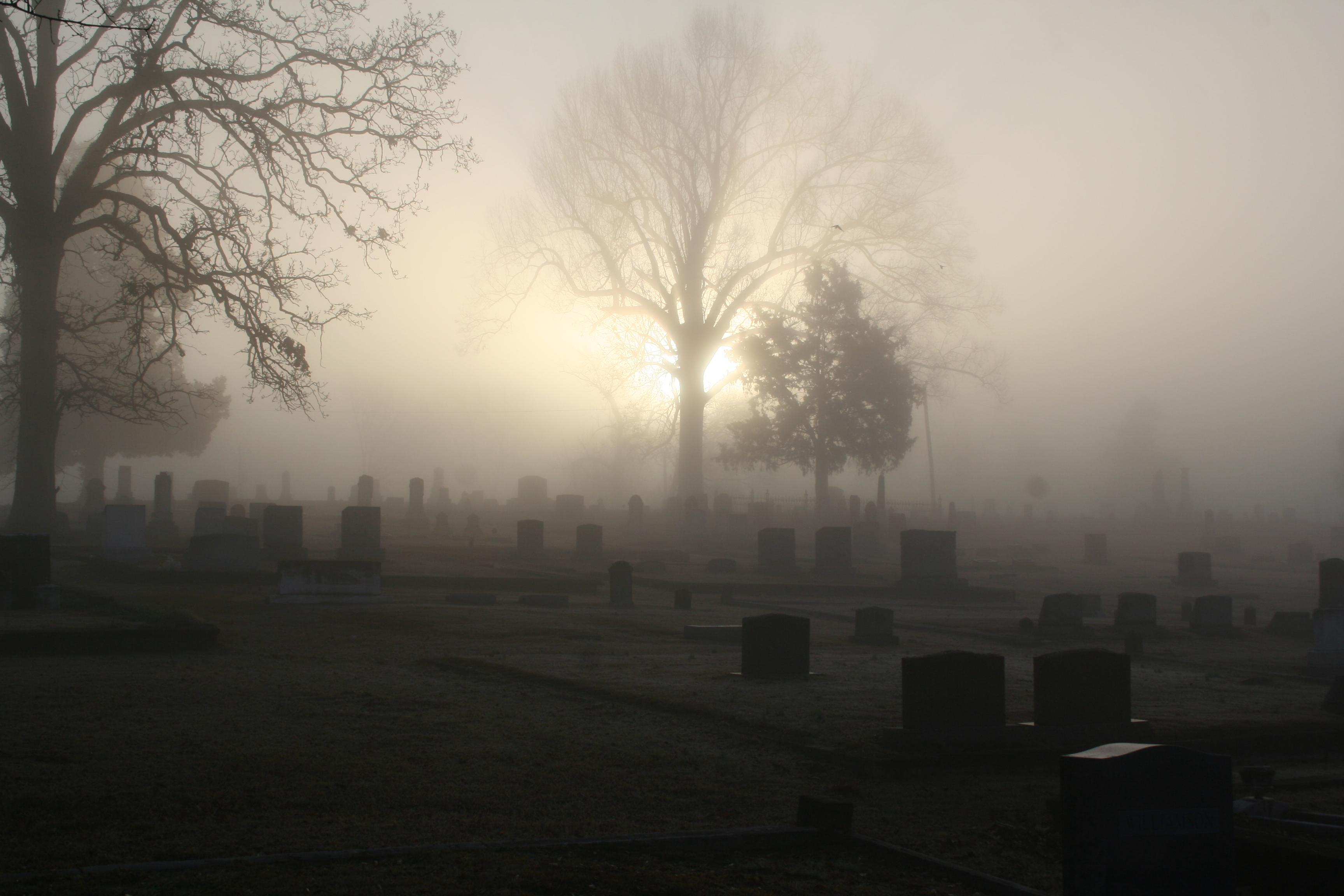 Wallpaper Atmospheric Calm Calming Cemetery Dawn Eerie Eery Fellows Fog Foggy Grave Graves Graveyard Headstone Headstones Lenstagged