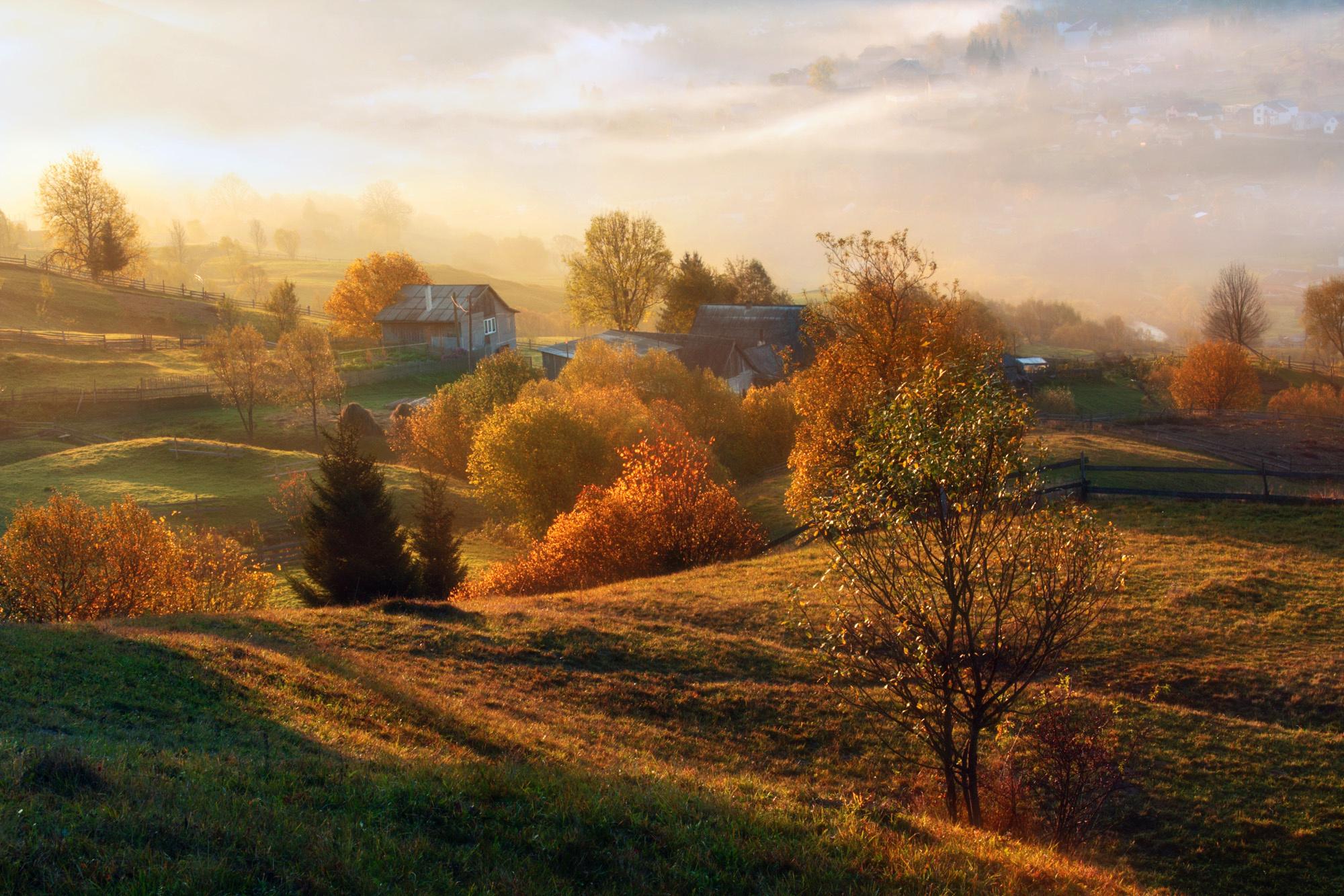 картинки лес природа осень деревня продюсирования, свободой