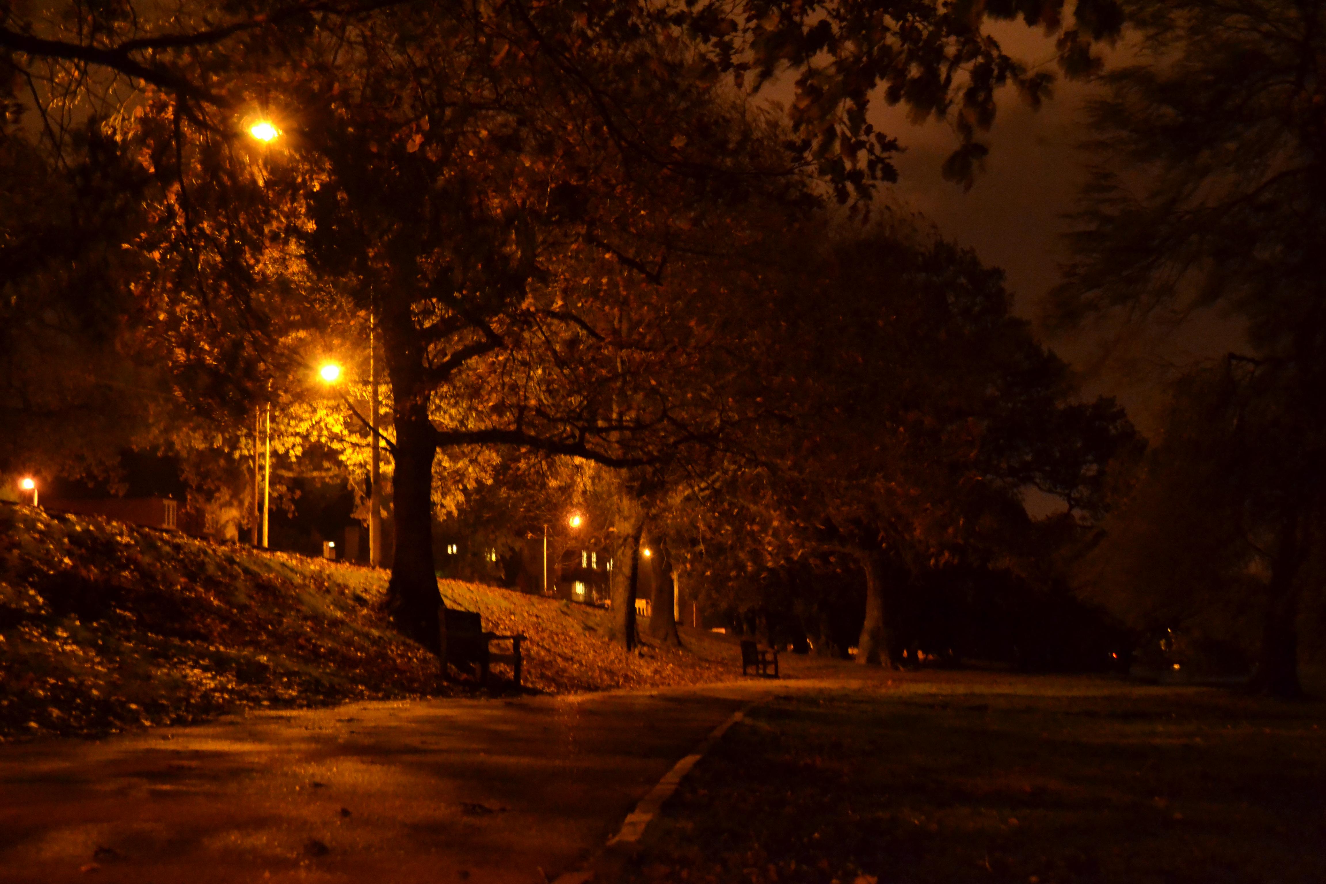 Wallpaper Autumn Night Dark Cardiff Atmosphere Roathpark 4608x3072 936835 Hd Wallpapers Wallhere