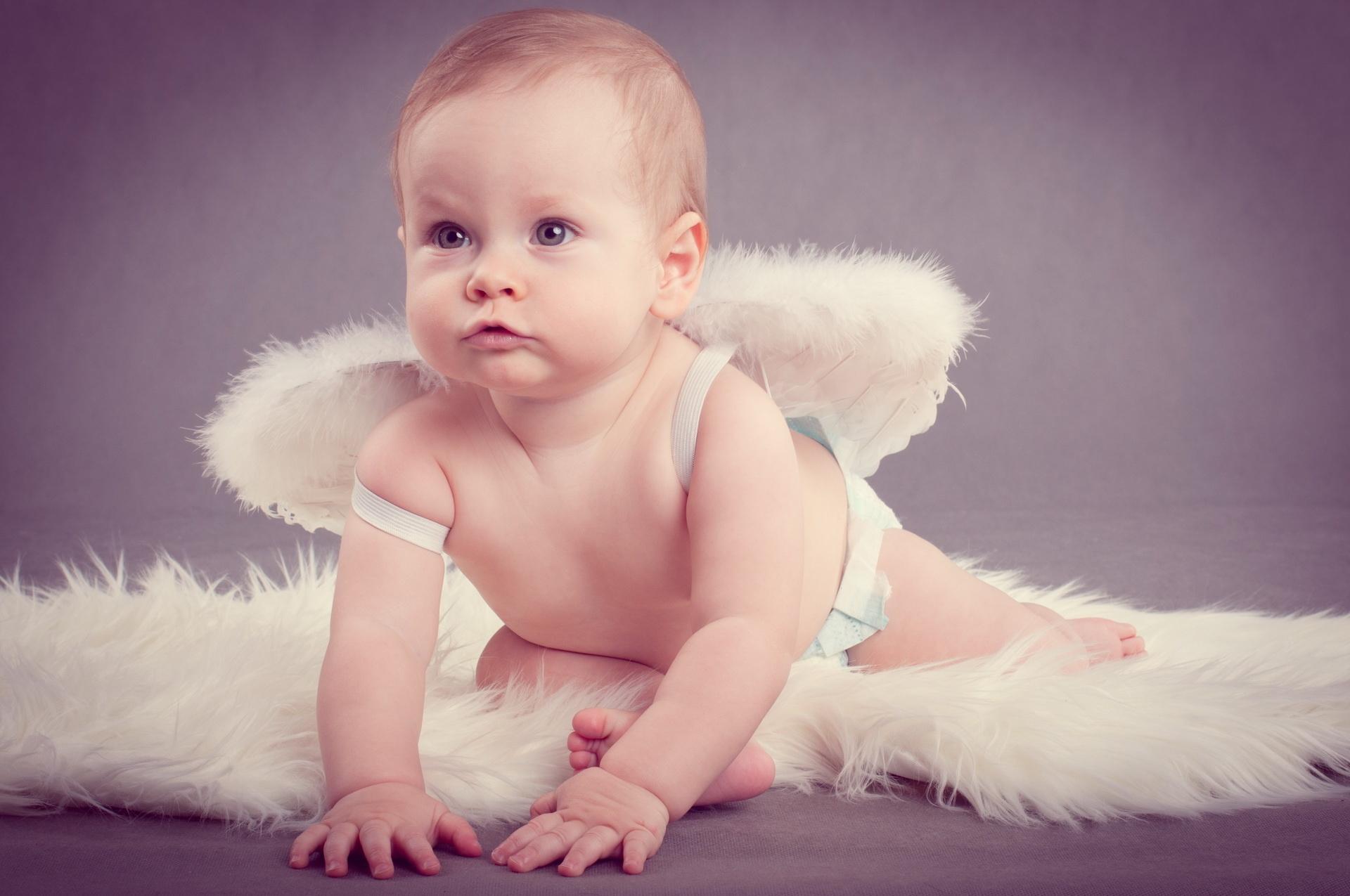 шарлям, картинки на телефон детка с крылышками доме канализация