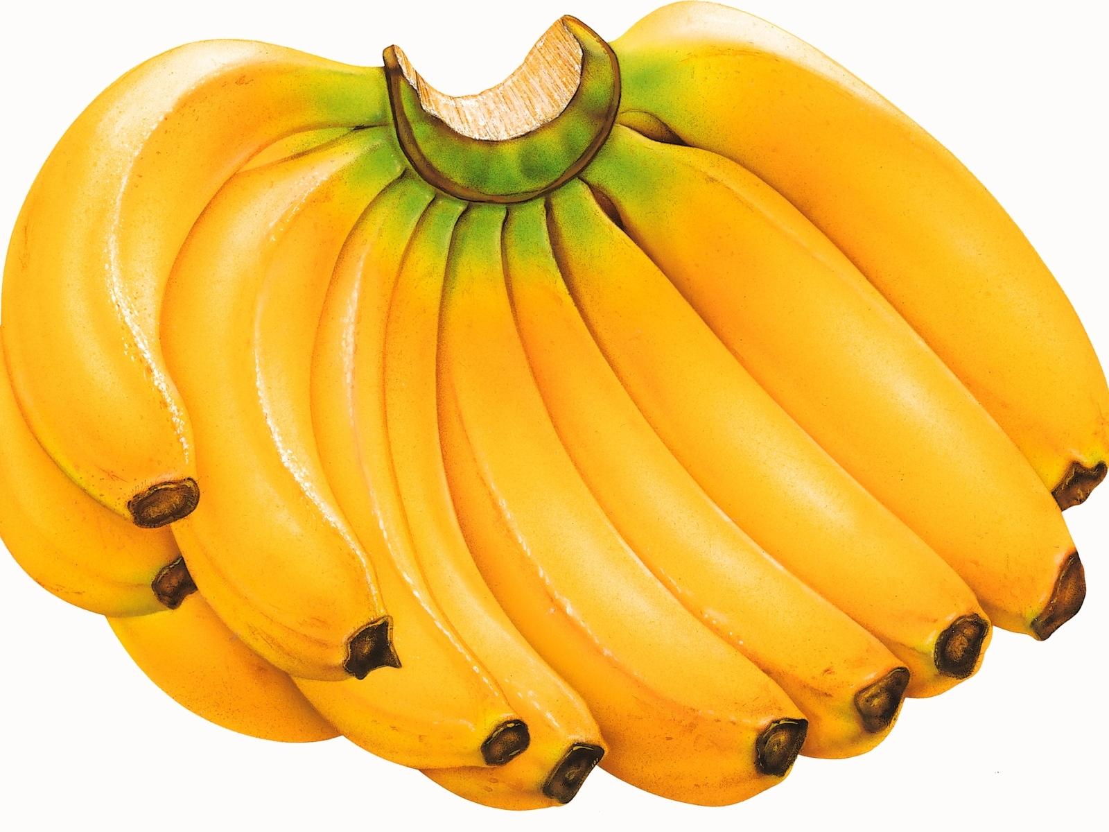 デスクトップ壁紙 バナナ クラスタ フルーツ 1600x1200