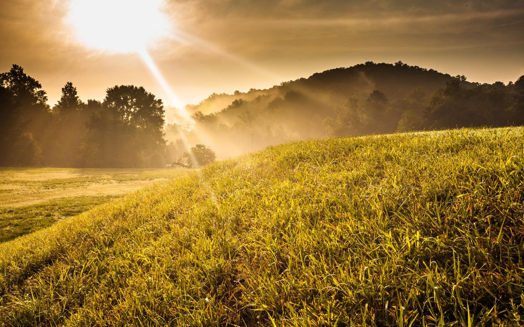 Картинки природа солнце