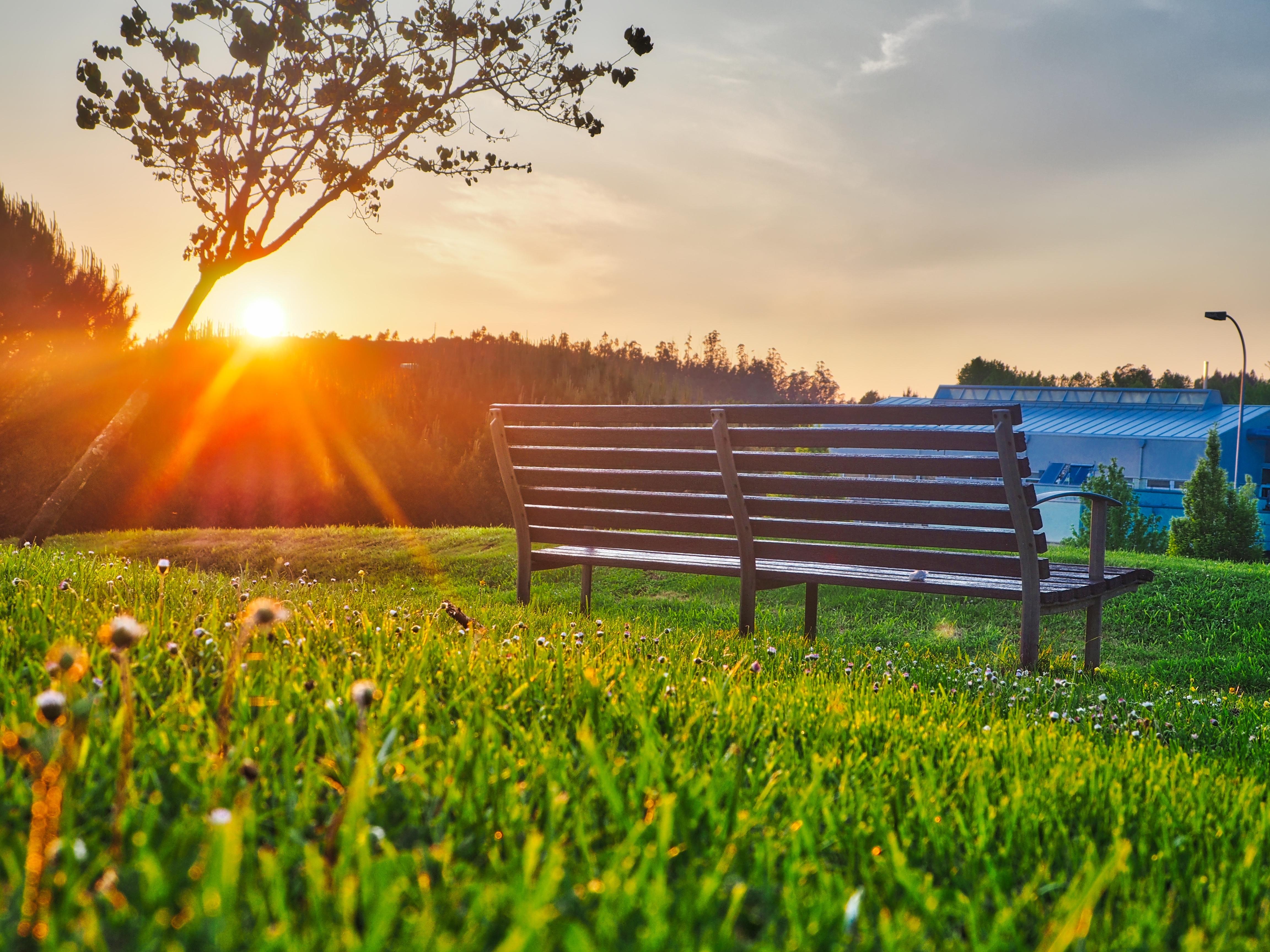 Wallpaper Bench Park Sunlight Summer 4608x3456 Goodfon