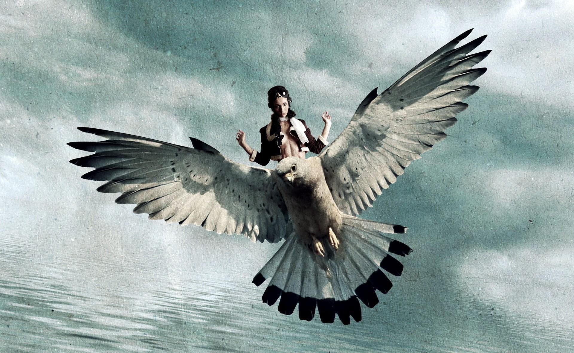 что цель картинка человек летит на птице покровском