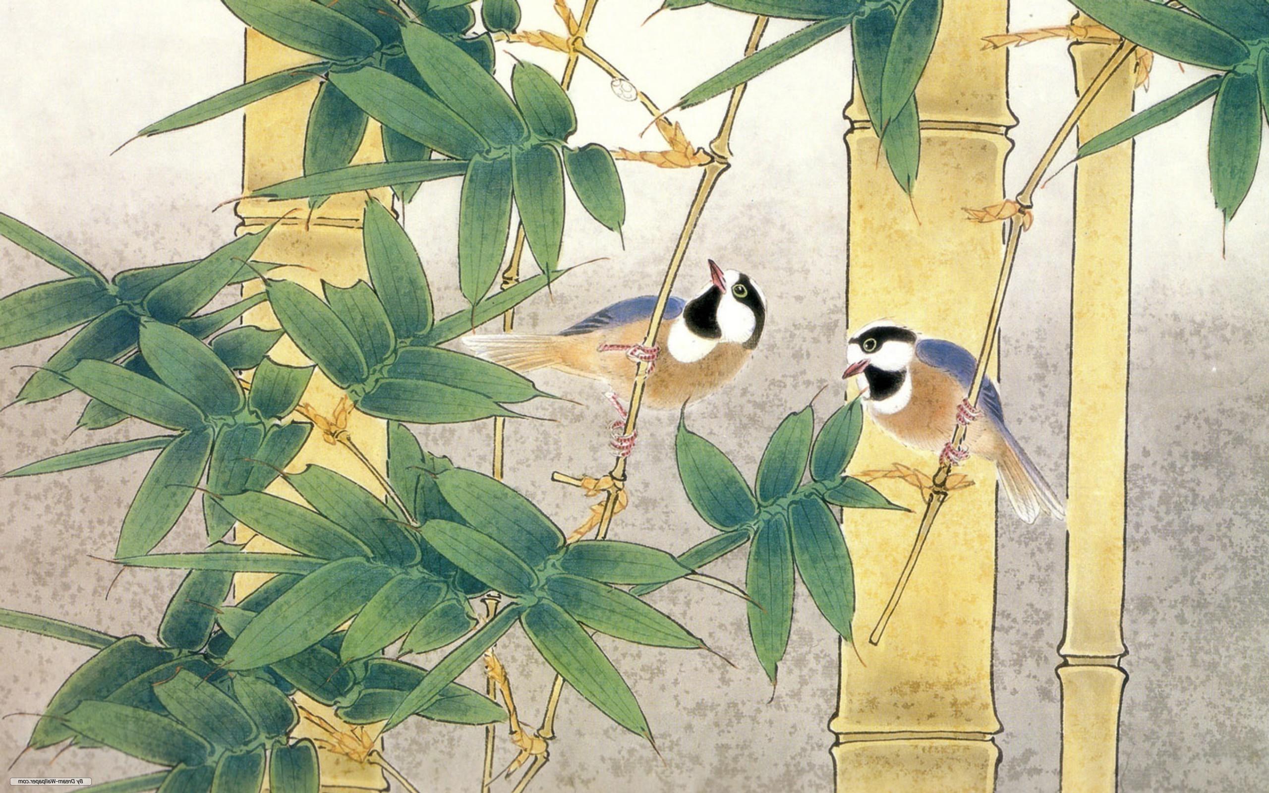 Wallpaper : birds, nature, branch, green, jungle, bamboo, color ...