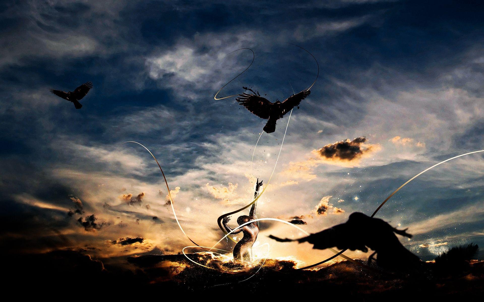 картинки летать в небе как птицы
