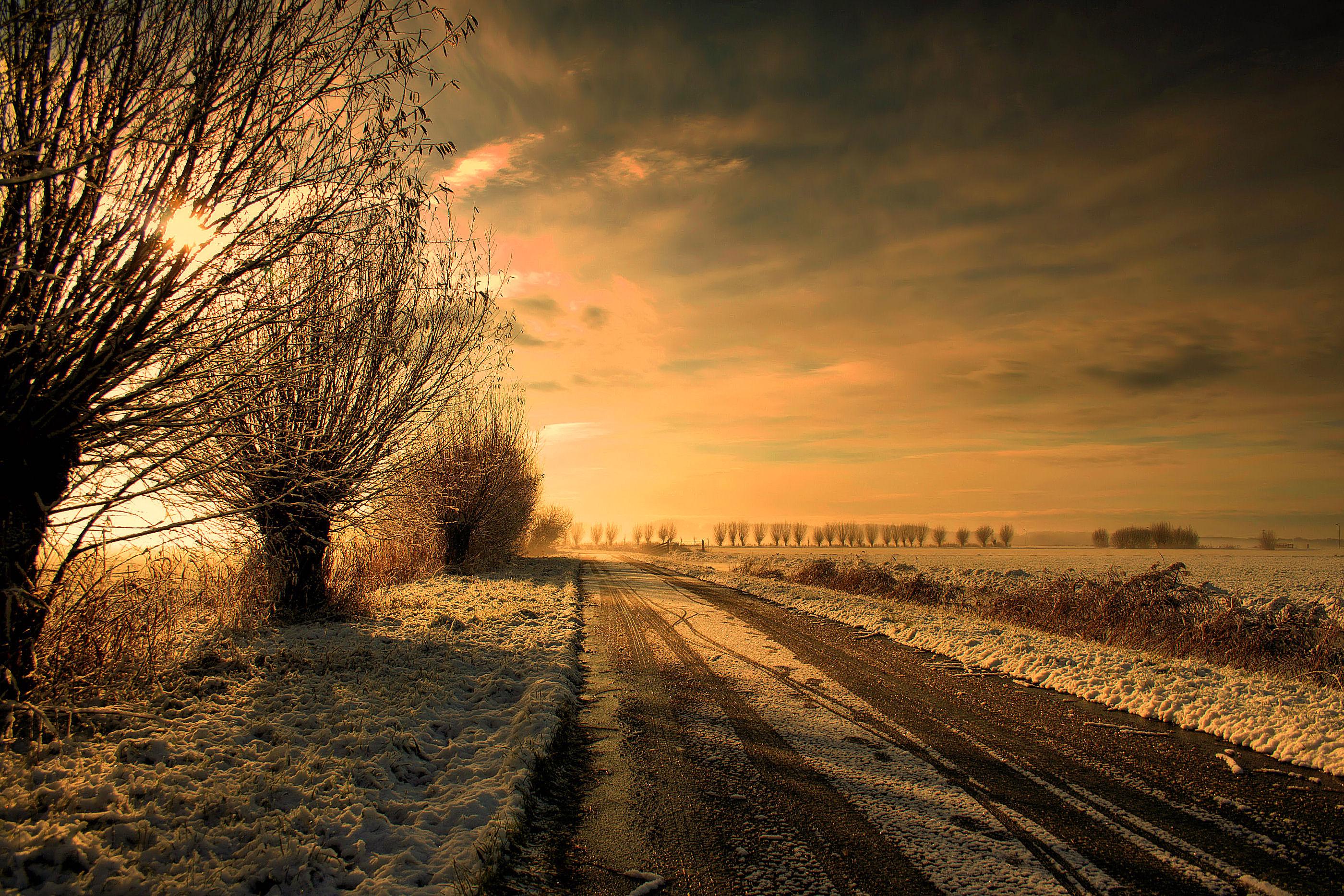 Hintergrundbilder Geburtstag Baume Winter Himmel Natur