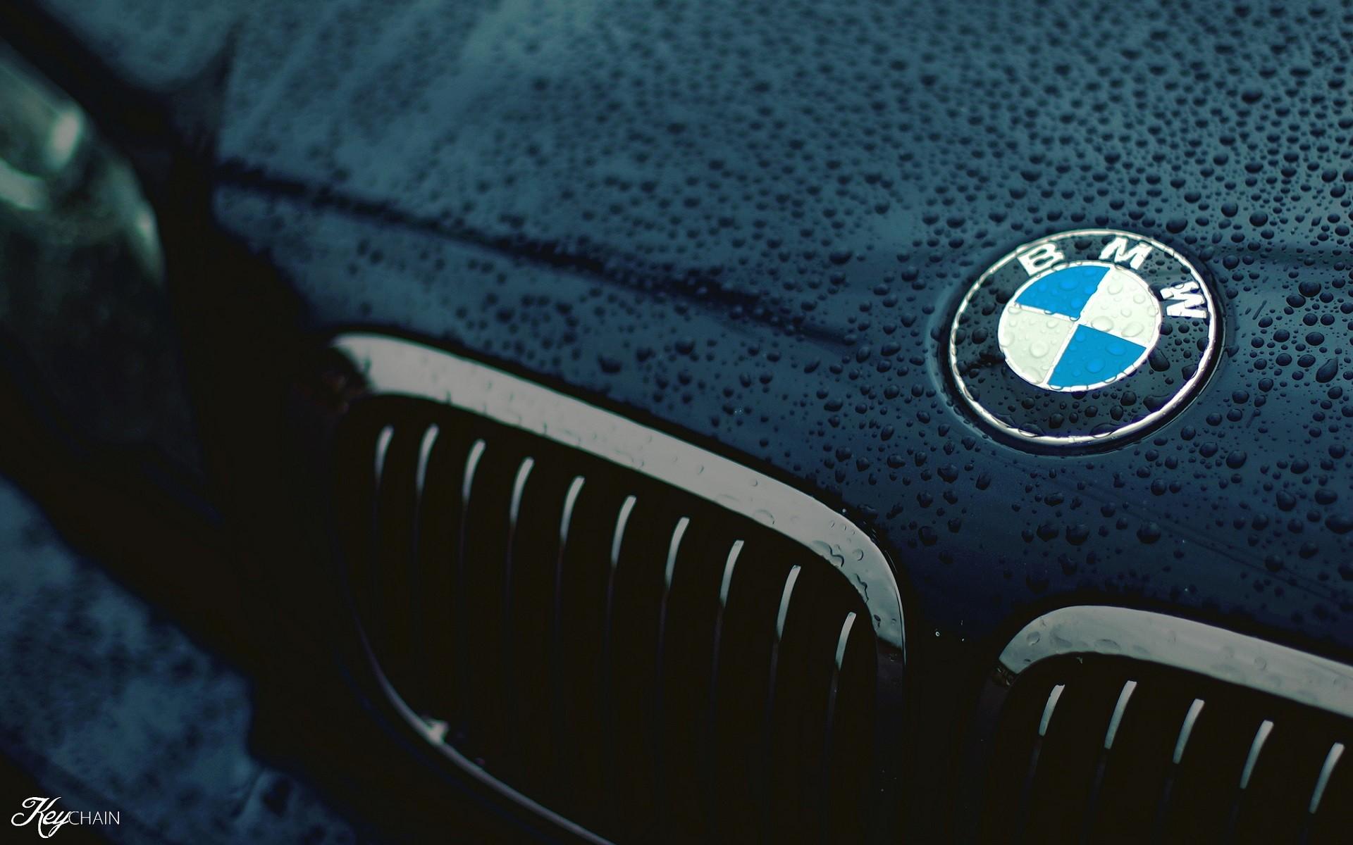 Лучшие фото логотипа бмв