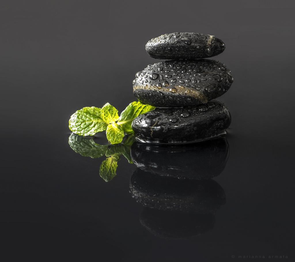Fond d 39 cran noir jardin eau roche vert humide pierre cailloux studio m ditation - Pierre eau pokemon noir ...