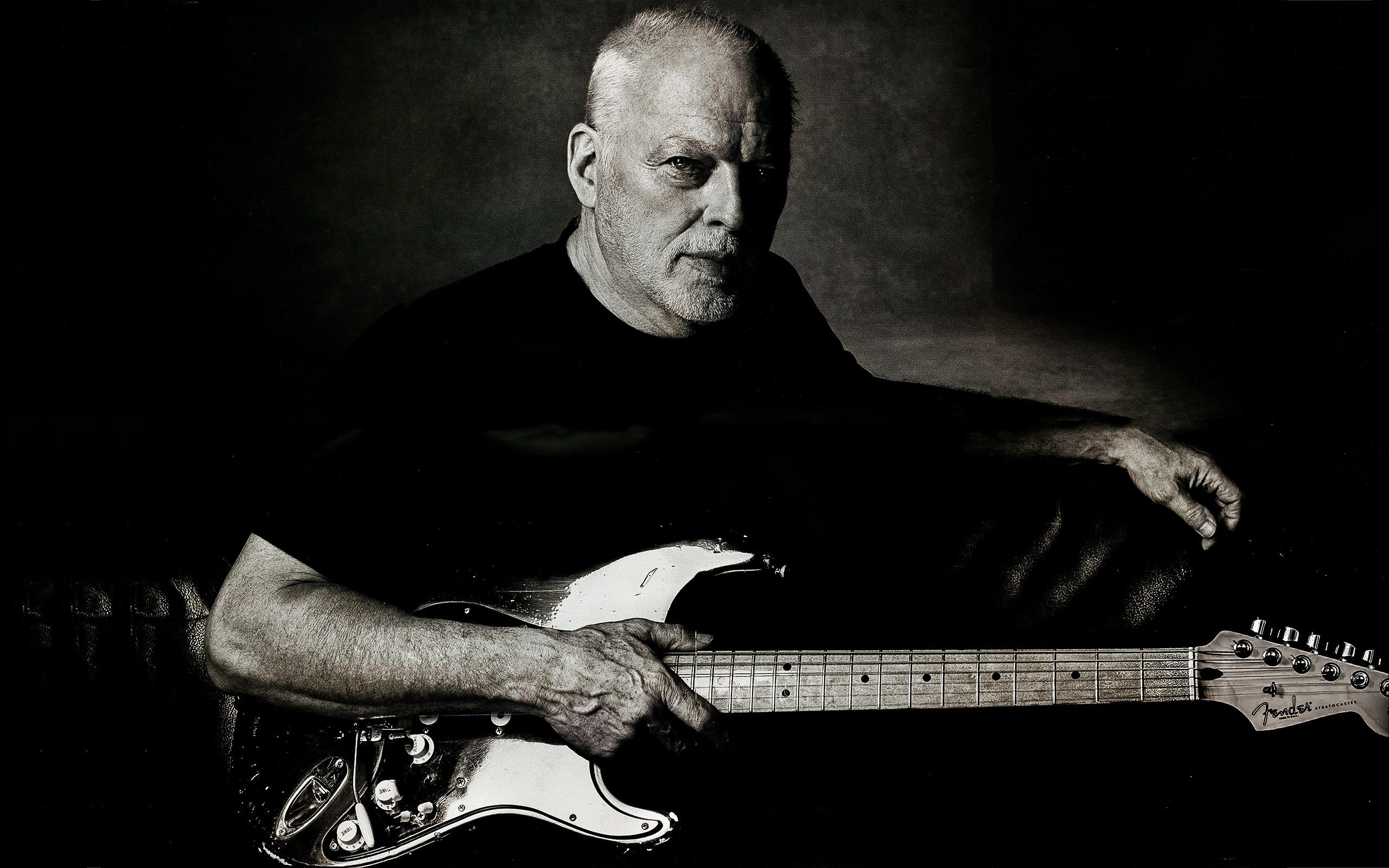 Wallpaper Musical Instrument Music Musician Pink Floyd