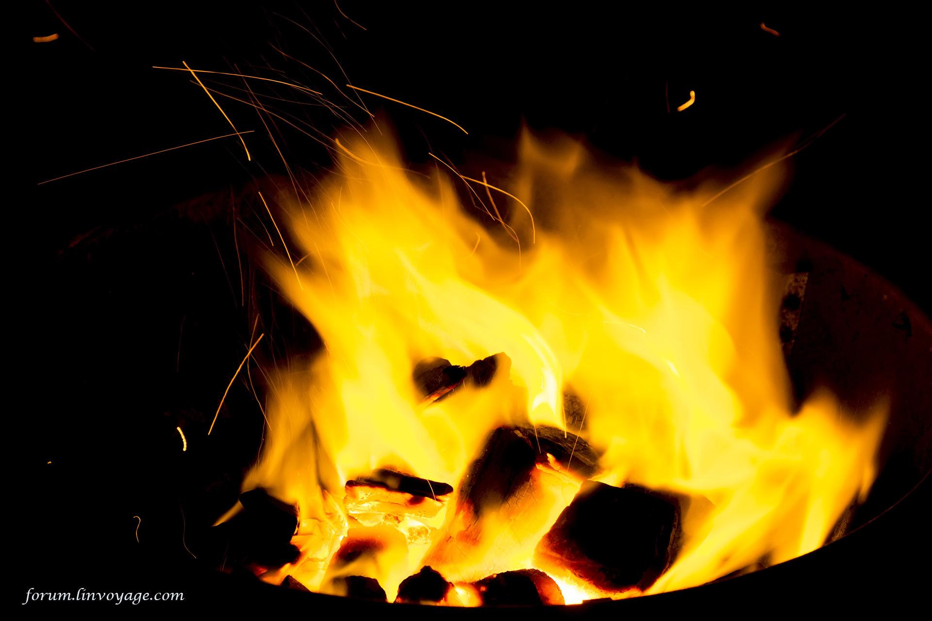 Wallpaper : black, night, fire, campfire, spark, color, outdoor