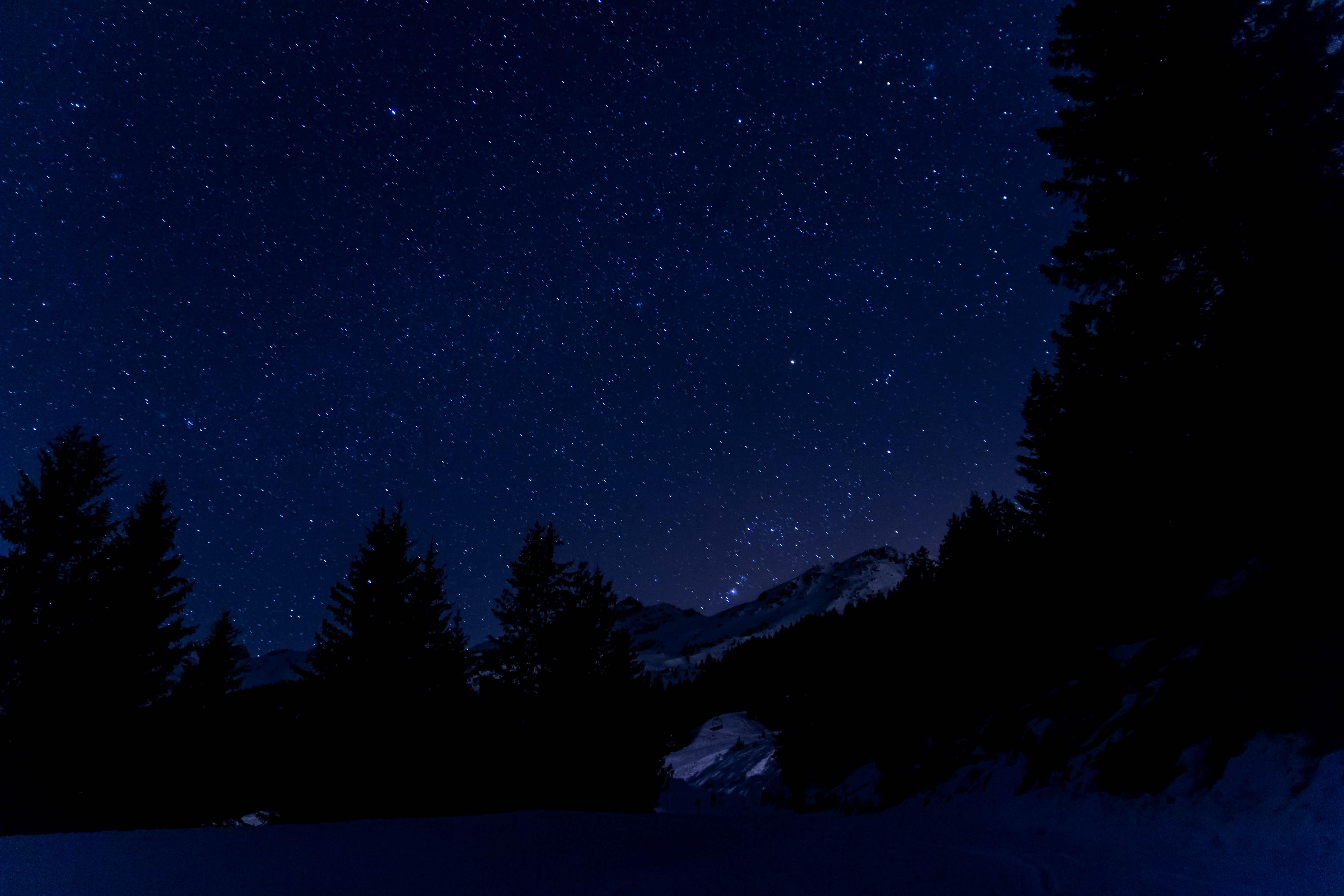 Fondos De Pantalla : Negro, Noche, Cielo, Nieve, Estrellas