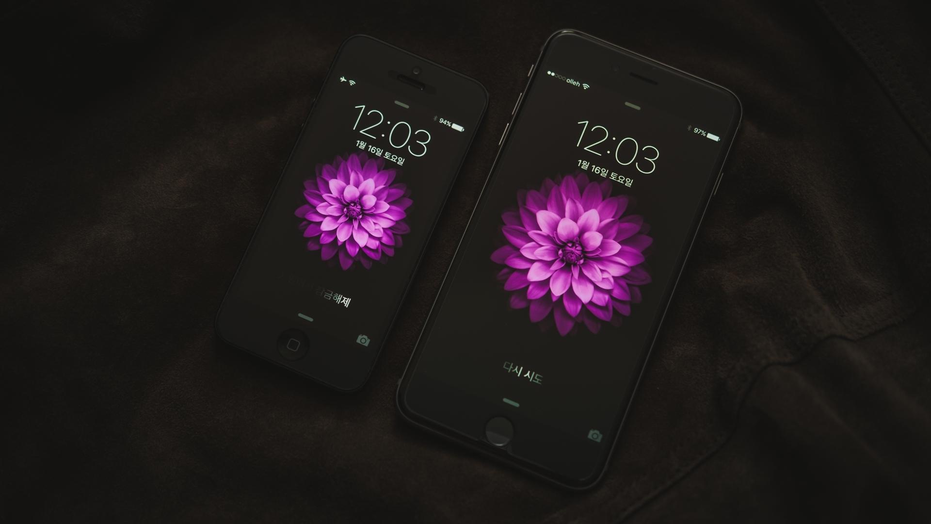 Wallpaper Black Purple Iphone 6 Electronics Color